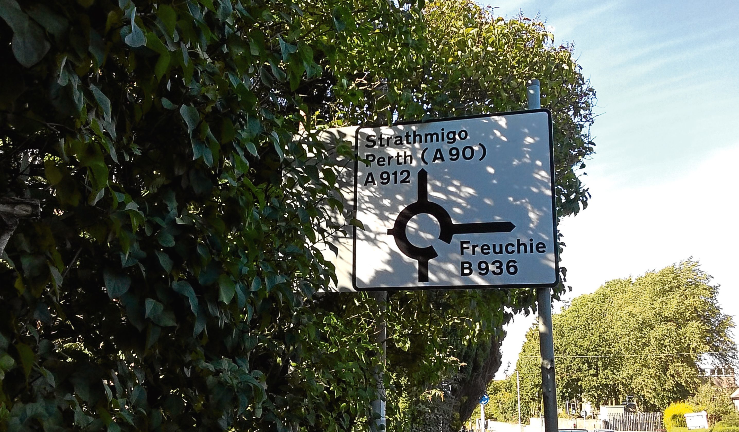 If you can spot spelling mistakes, such as on this Fife road sign, you could be more attractive to mates - possibly.
