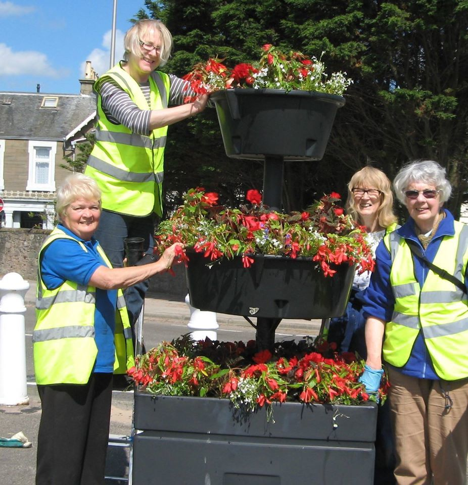 """From left to right the """"girls"""" at the Windmill Car Park planter are: Ann Taylor, Liz Taylor, Anne Hesketh,and Mary Saunders."""