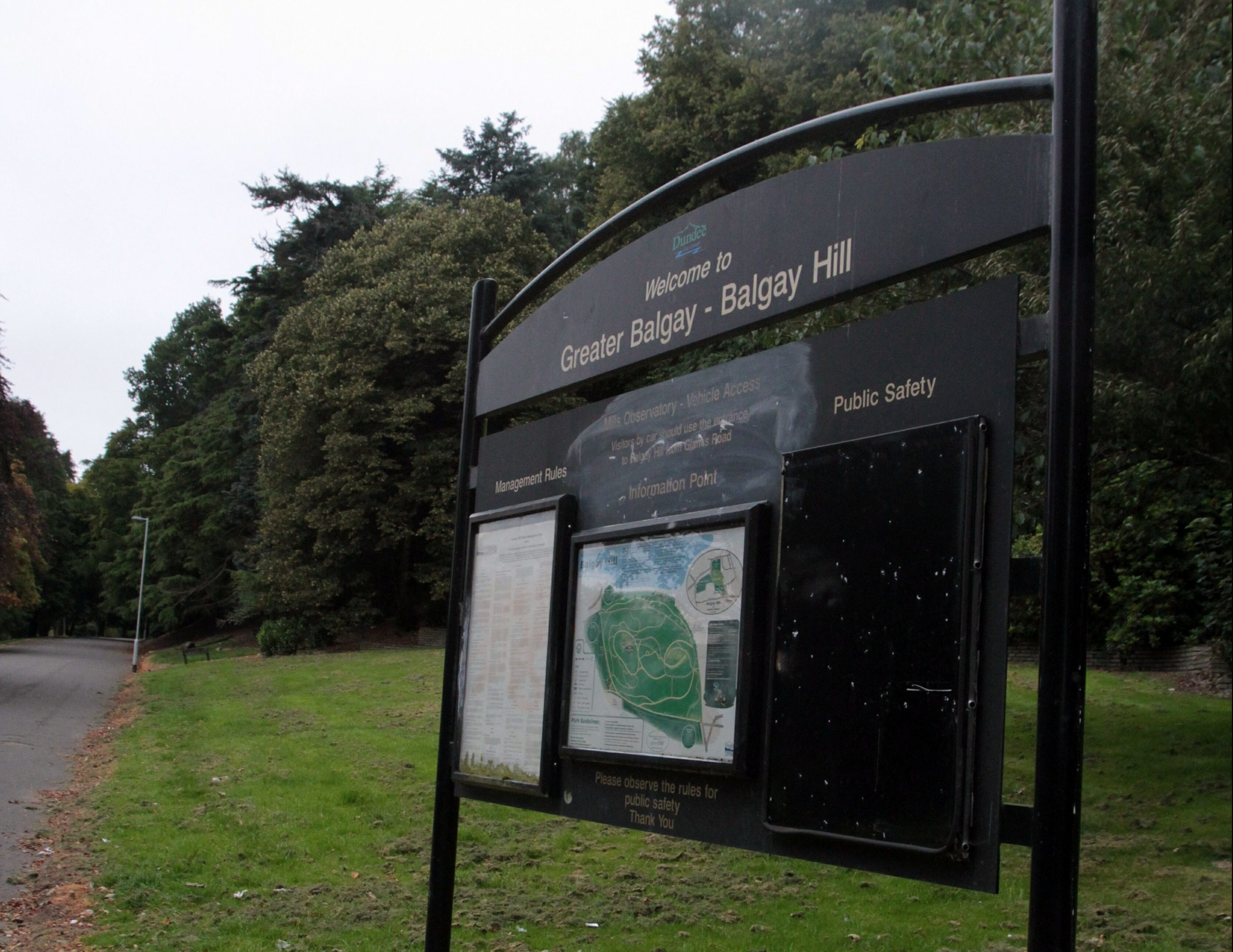 The dog was hit in Balgay Park.