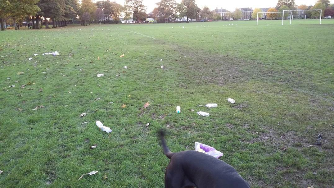 Some of the mess dog walkers claim is left by amateur football teams on a weekly basis