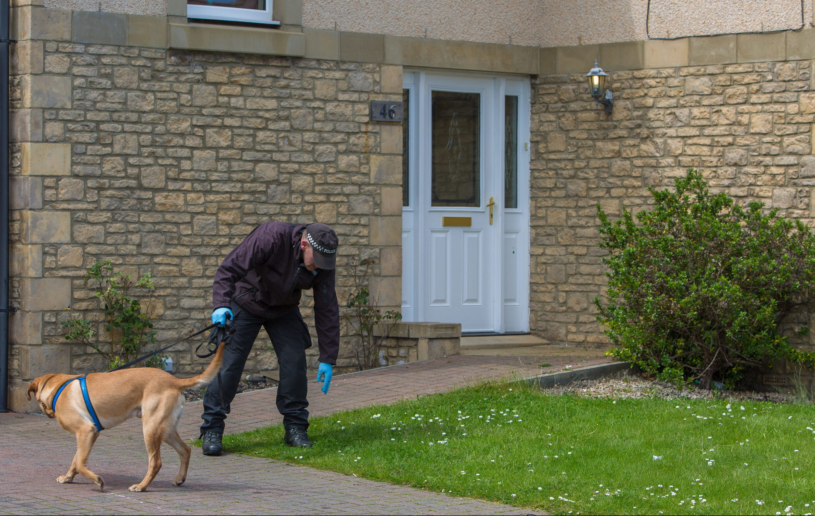 Bullet holes were visible in the front door of the property as a sniffer dog looked for clues in the garden the day after the incident.