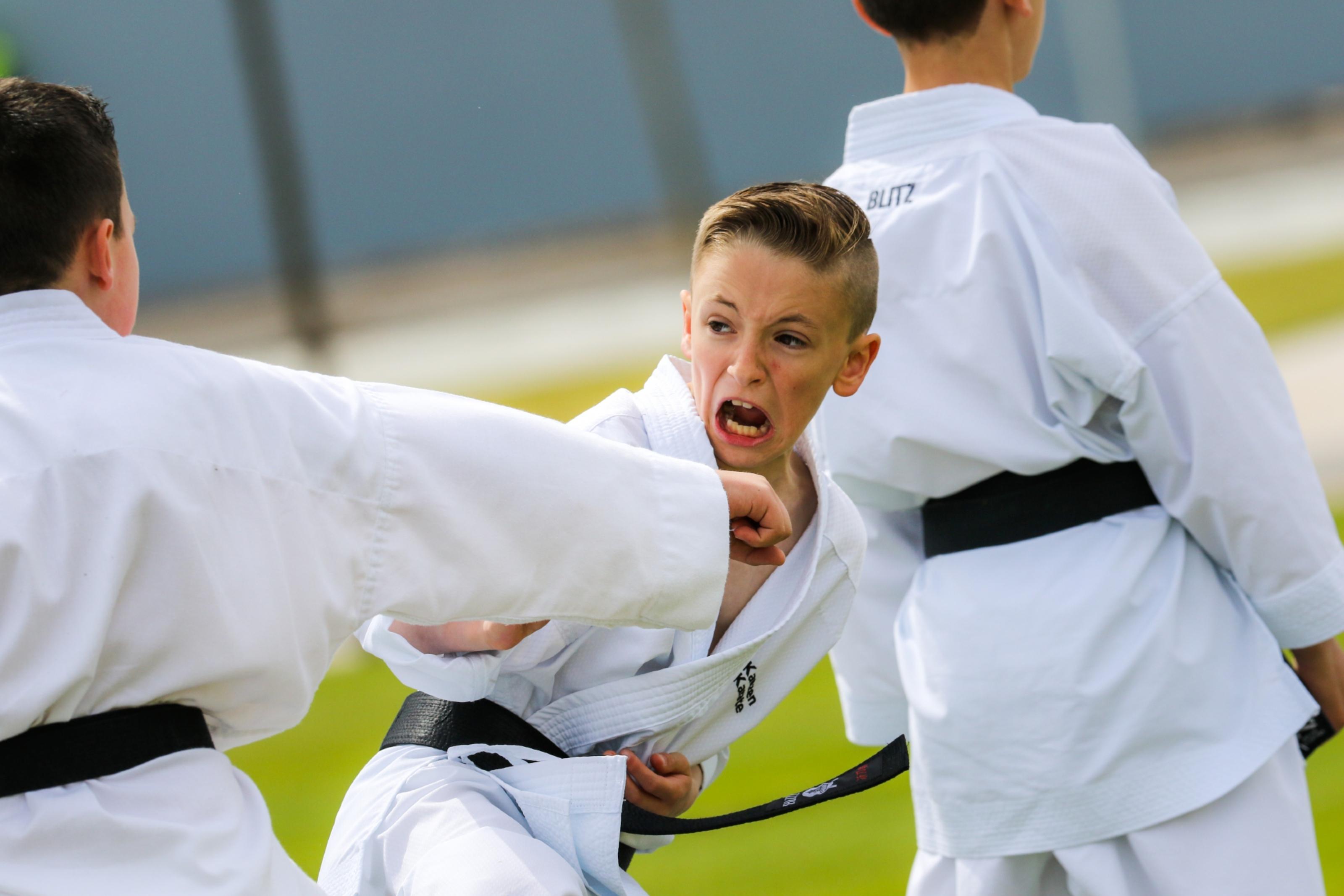 Kanzen Karate School put on a display.
