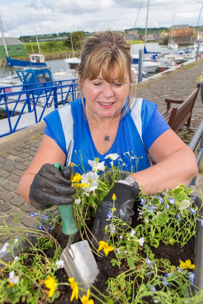 Barbara Boyd attends to the planters installed by St Andrews in Bloom