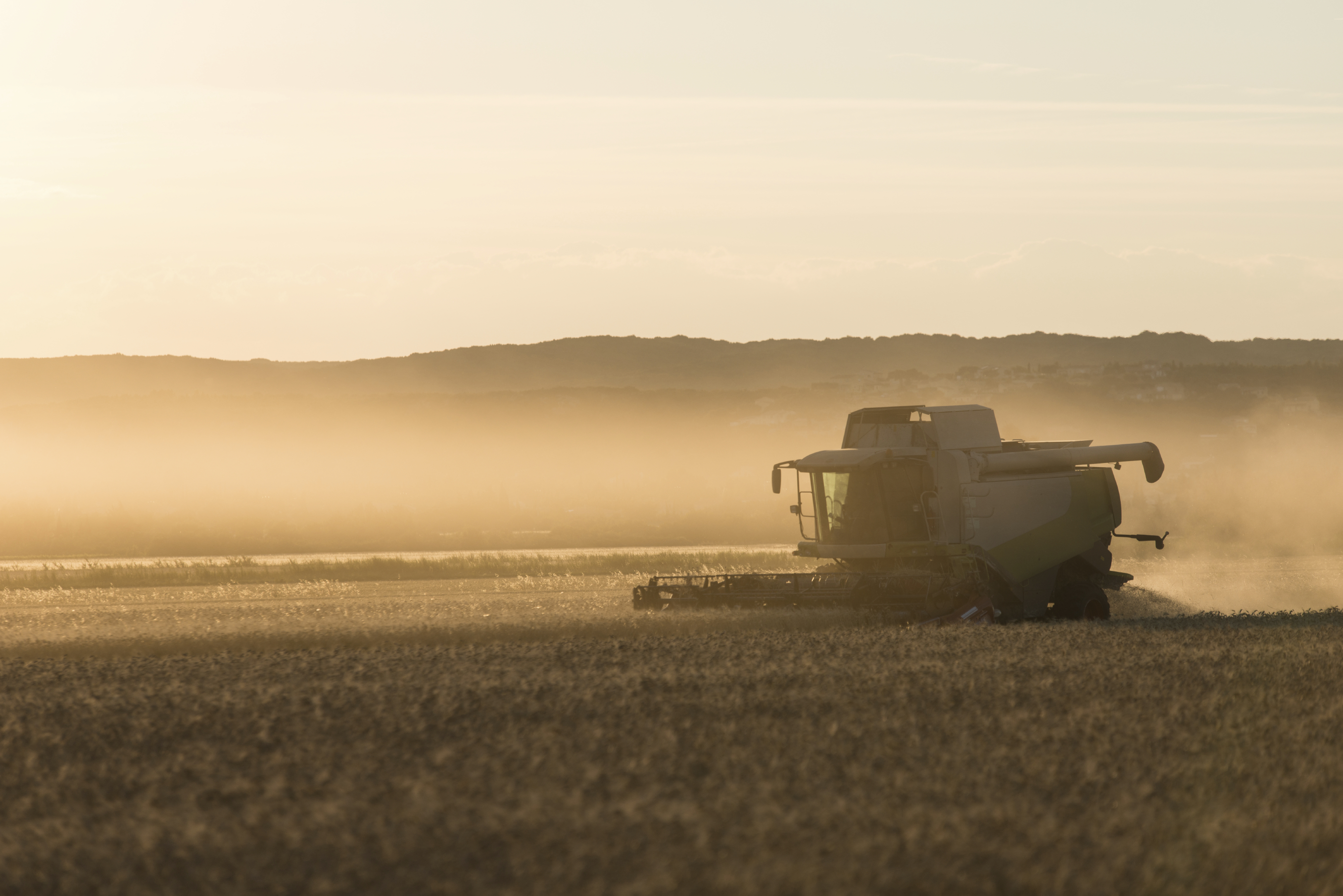 There are more than 150 trial plots to harvest