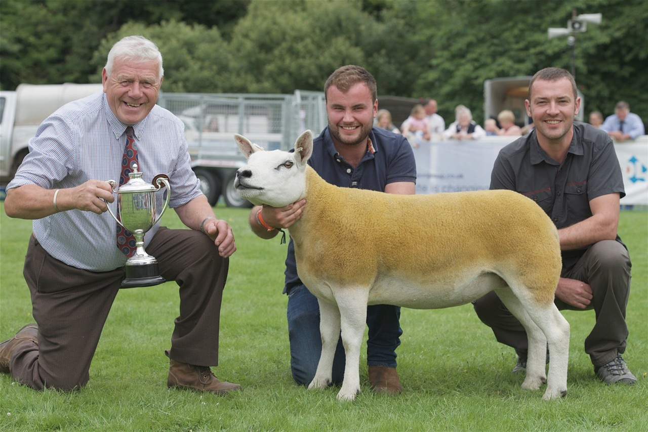The Texel breed champion took the top honour at the show