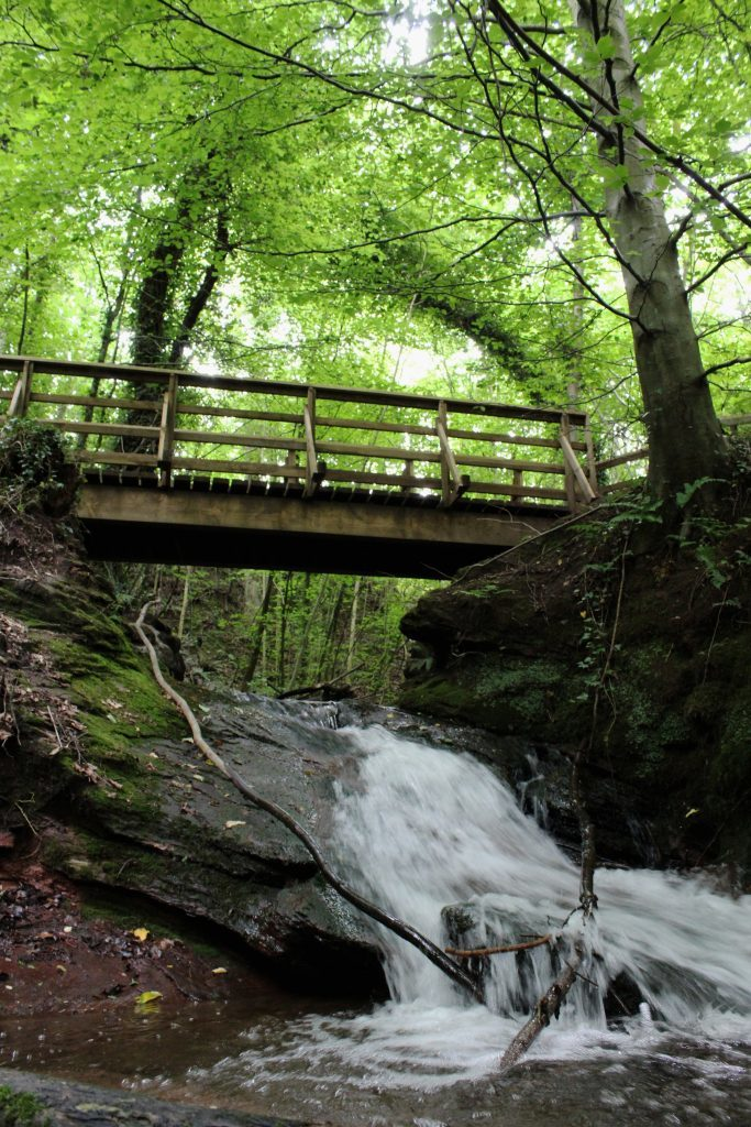 1 - Footbridge and falls in Abernethy Glen - James Carron, Take a Hike