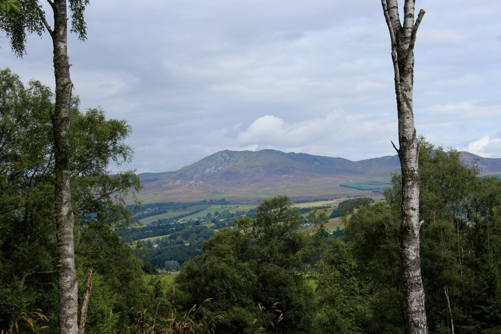 4 - A view of Ben Vrackie through the trees - James Carron, Take a Hike