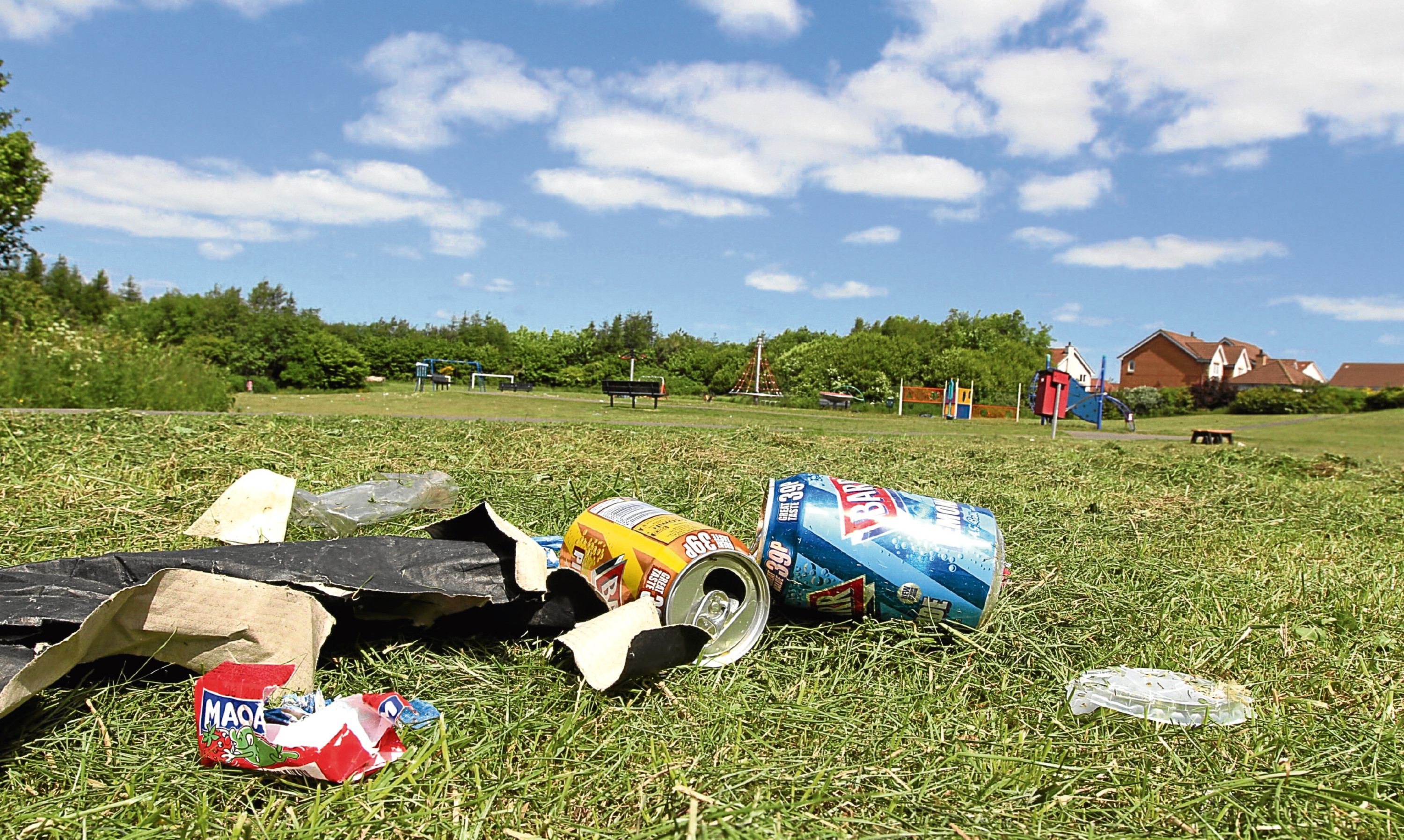 Litterbugs can be the scourge of communities