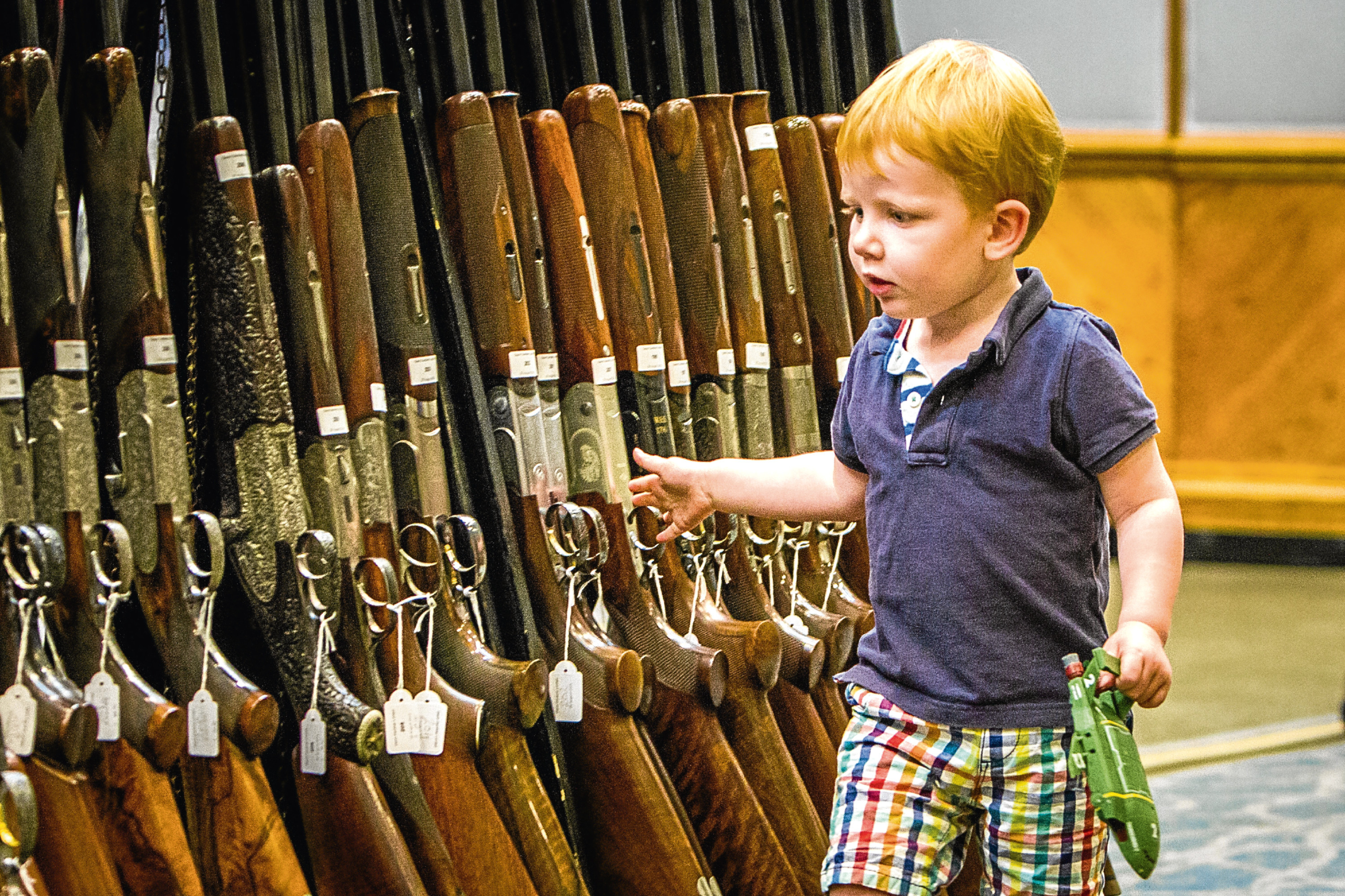 Courier News - Perth - Richard Burdge Story. Gavin Gardiner Ltd preparing for their annual auction of Modern & Vintage Sporting Guns. Picture shows Gavin's son William (aged 2), having a look around.  Gleneagles Hotel, Auchterarder. Friday 26th August 2016.