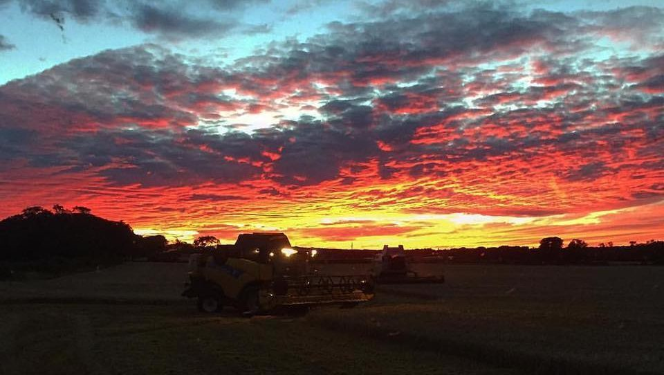 The harvest takes place under an unforgettable sky in this photo from Adam Donnachie near Carnoustie.