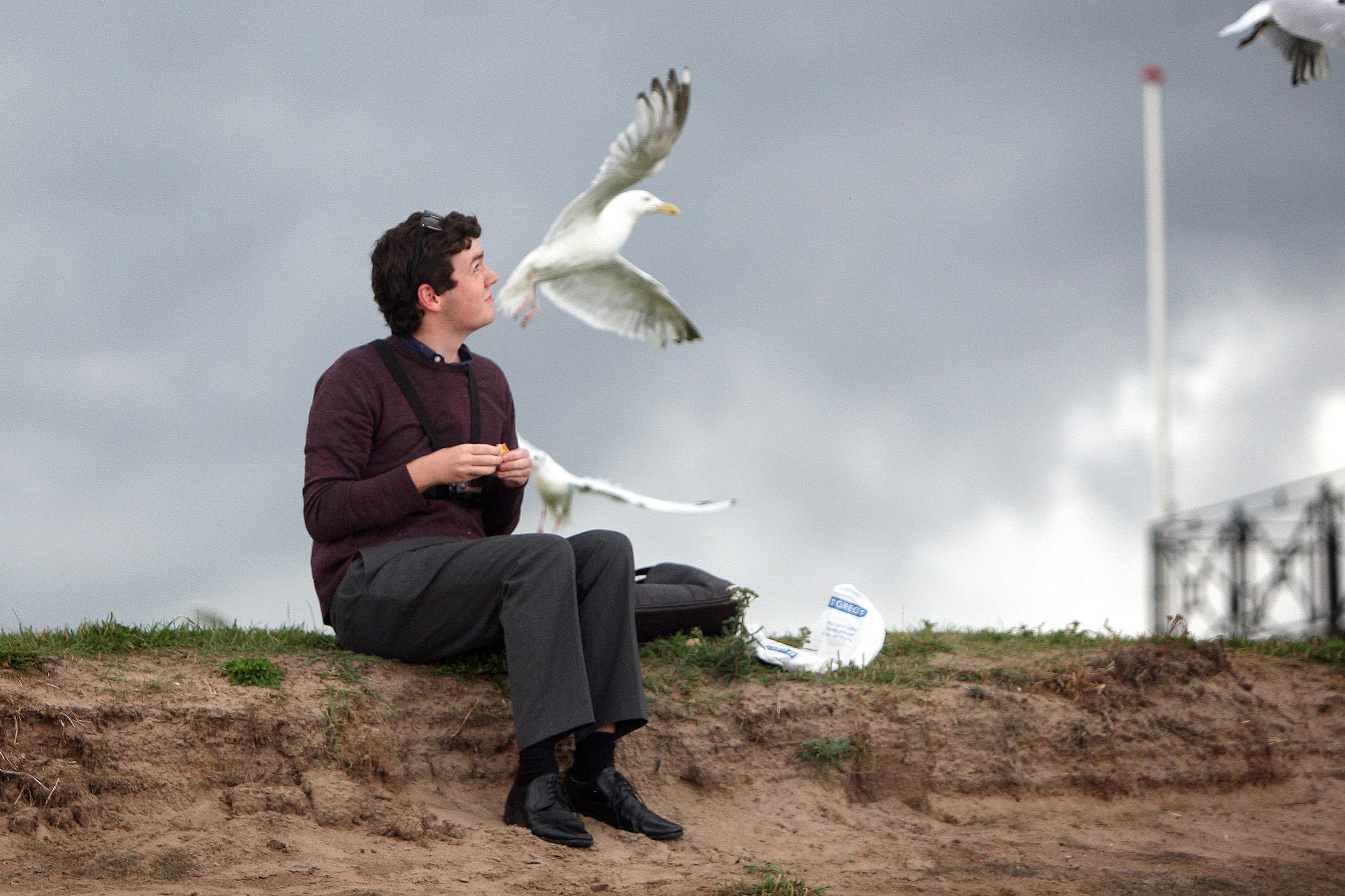Dundee reporter Ciaran Sneddon enjoying lunch in Broughty Ferry while gulls circle overhead.