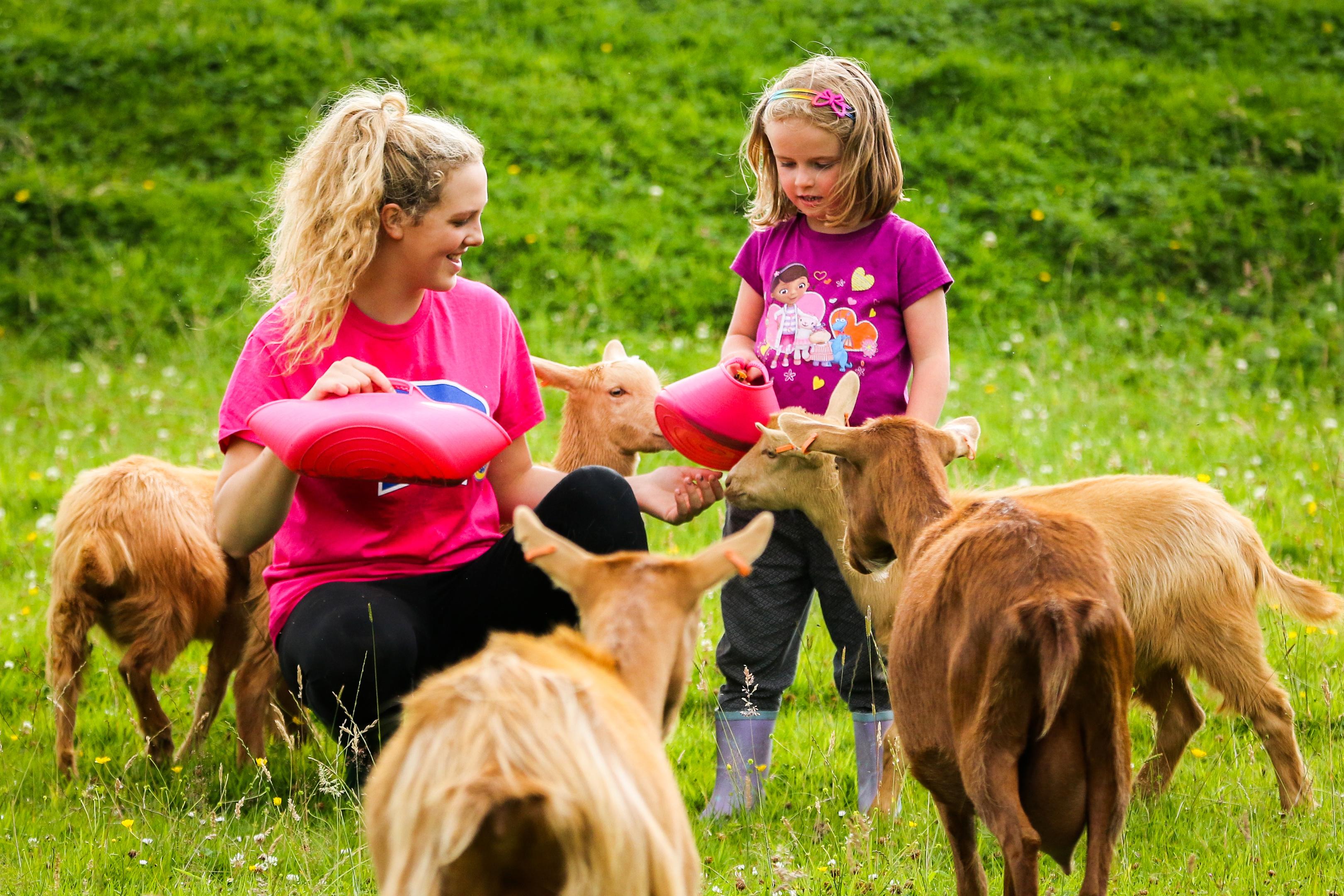Lisa Garrett (17) and her cousin Sophie Garrett (5) feeding the Golden Guernsey goats.