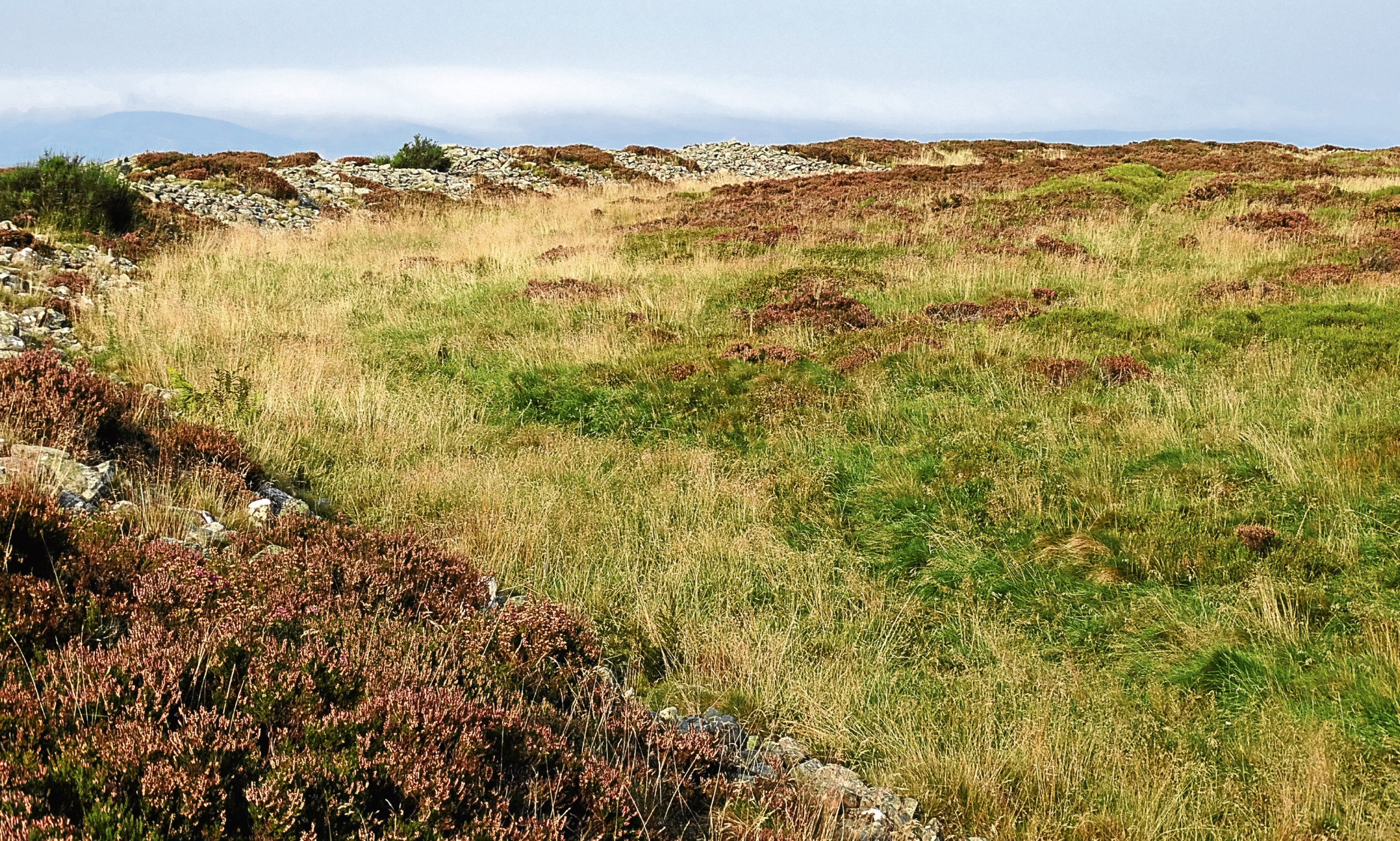 The summit of the White Caterthun, where there could well have been a settlement in centuries gone by.