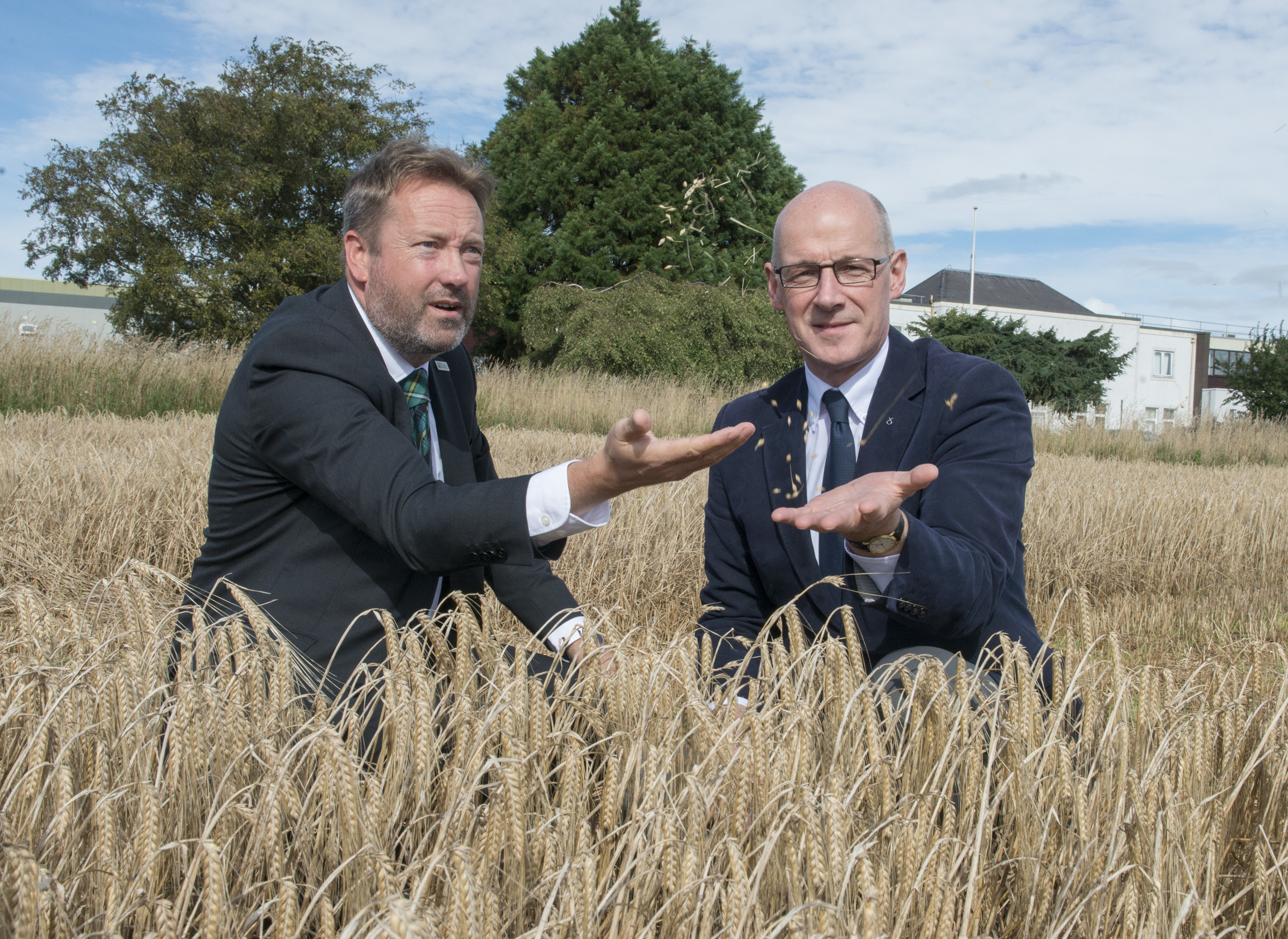 The barley hub project is predicted to create 3500 jobs in barley-related industries