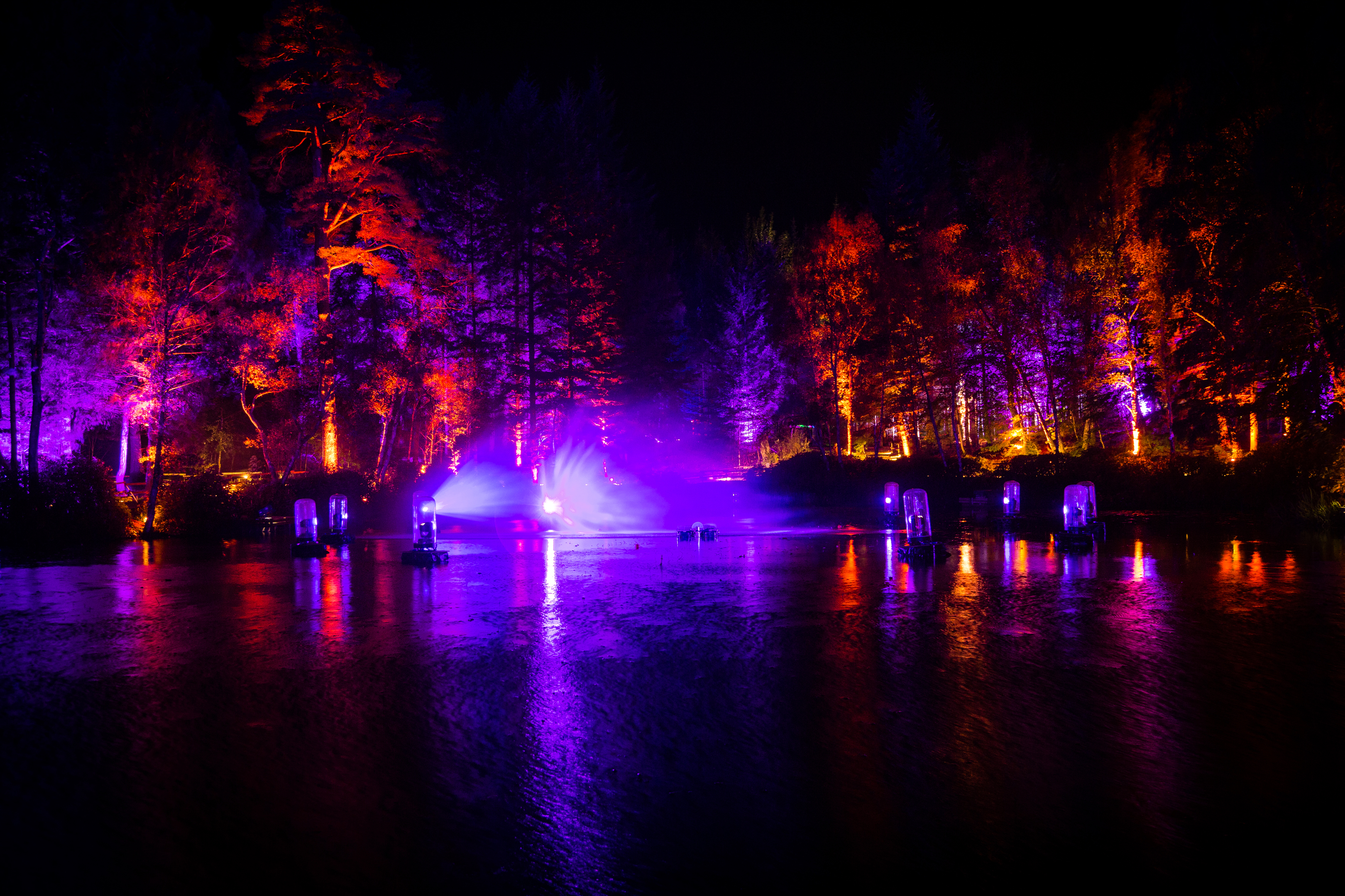The Enchanted Forest near Pitlochry.