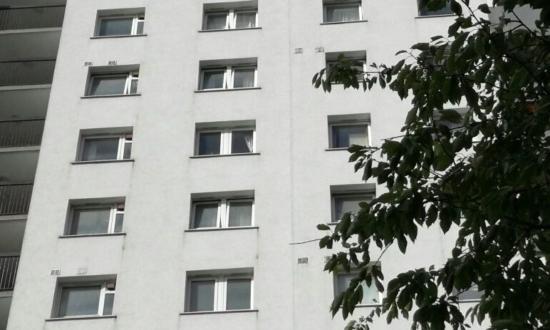 The 31-year-old woman died after falling from a 14th floor window.