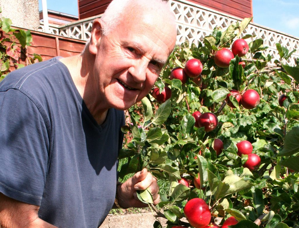 John picks early apples