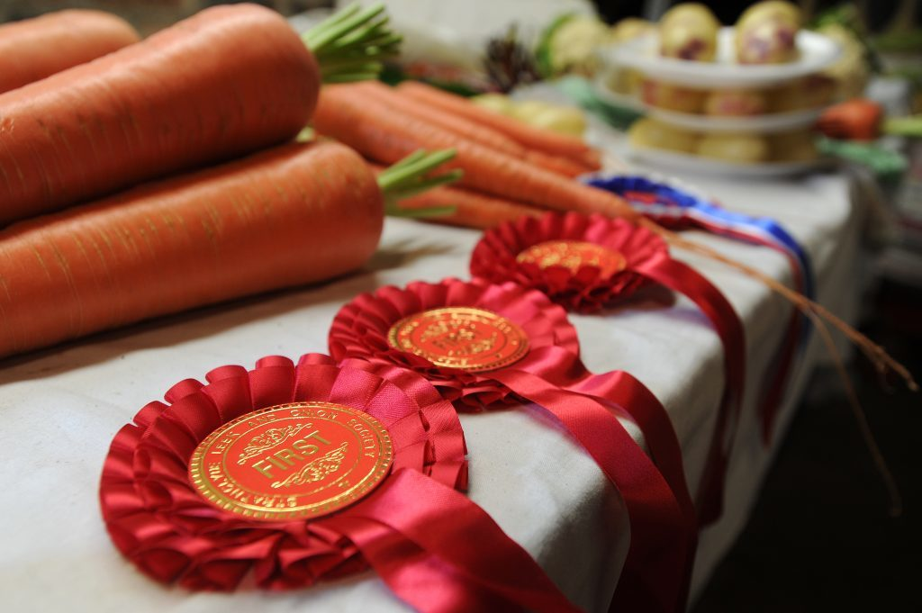 Some of the rosettes Alistair Gray has won for his vegetables.