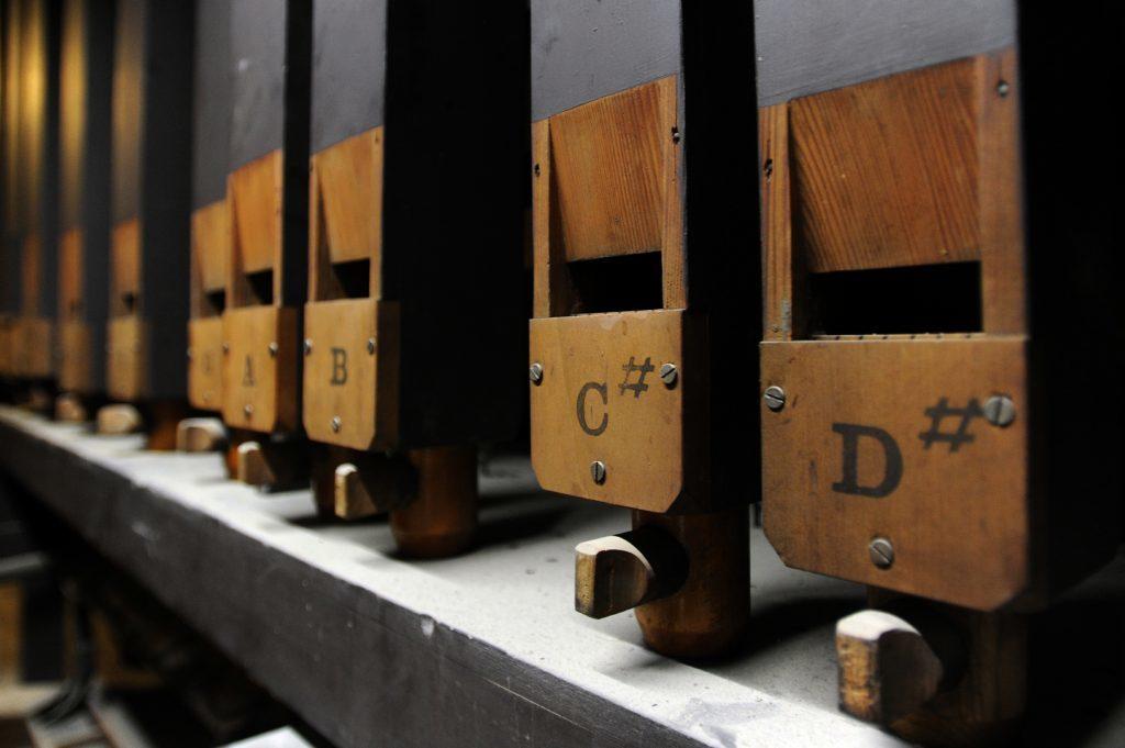 Inside the organ.