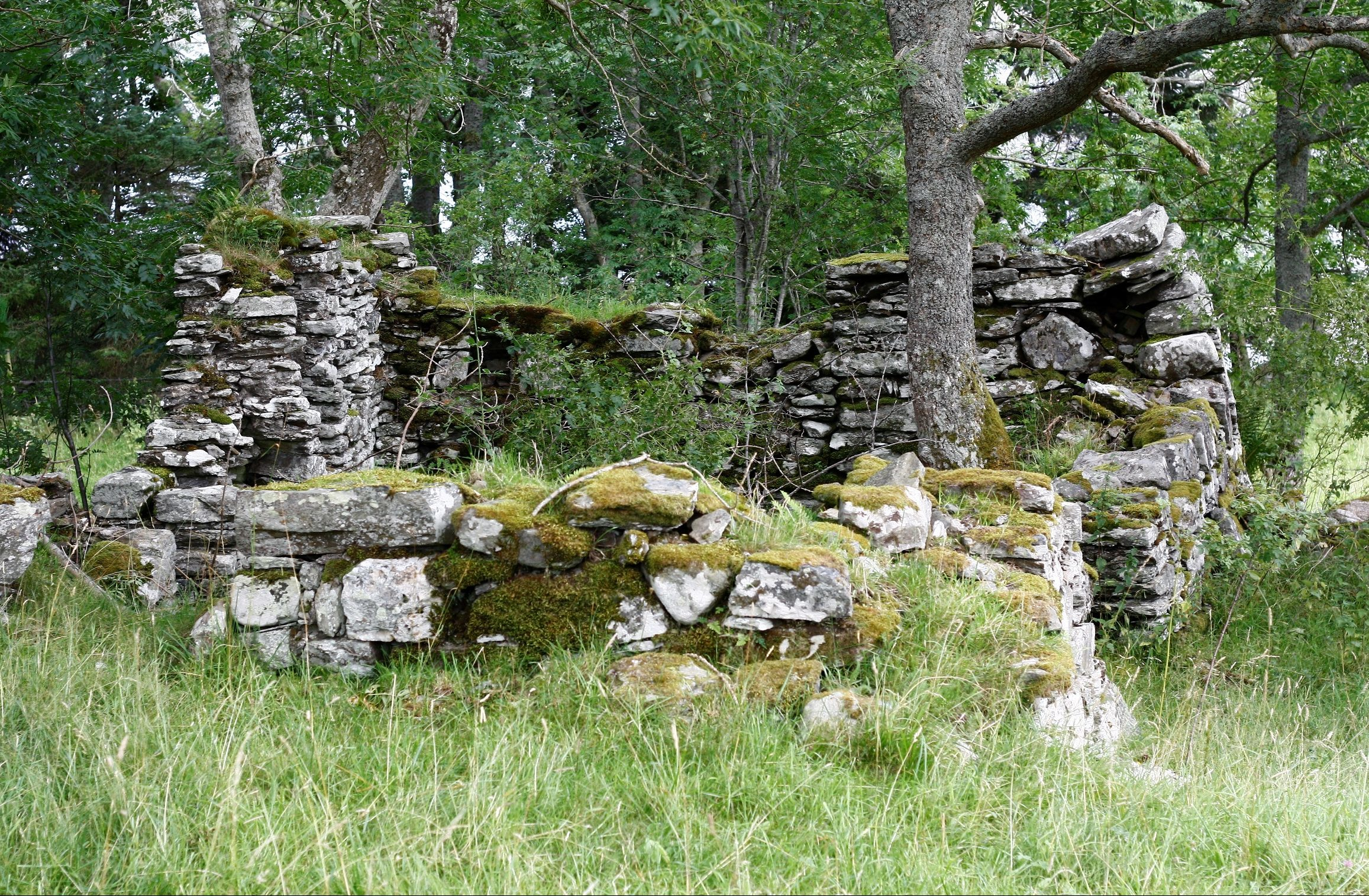 Ruins on the site.