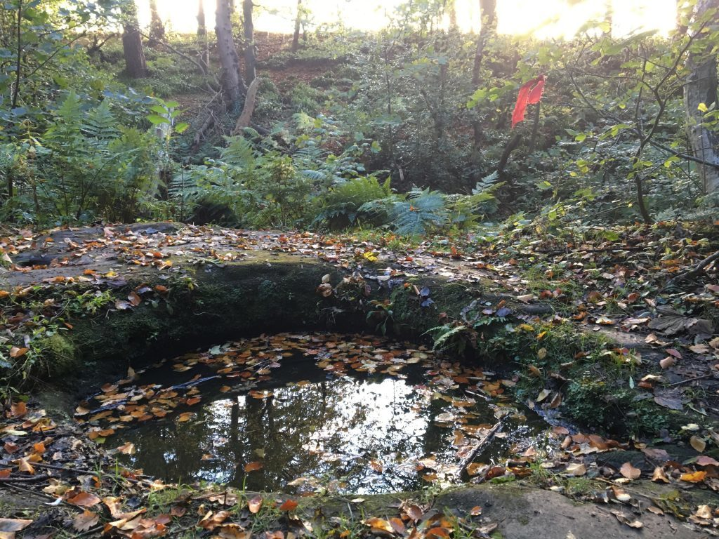 Dunino Den - a ritual pool dating back to Pictish times?