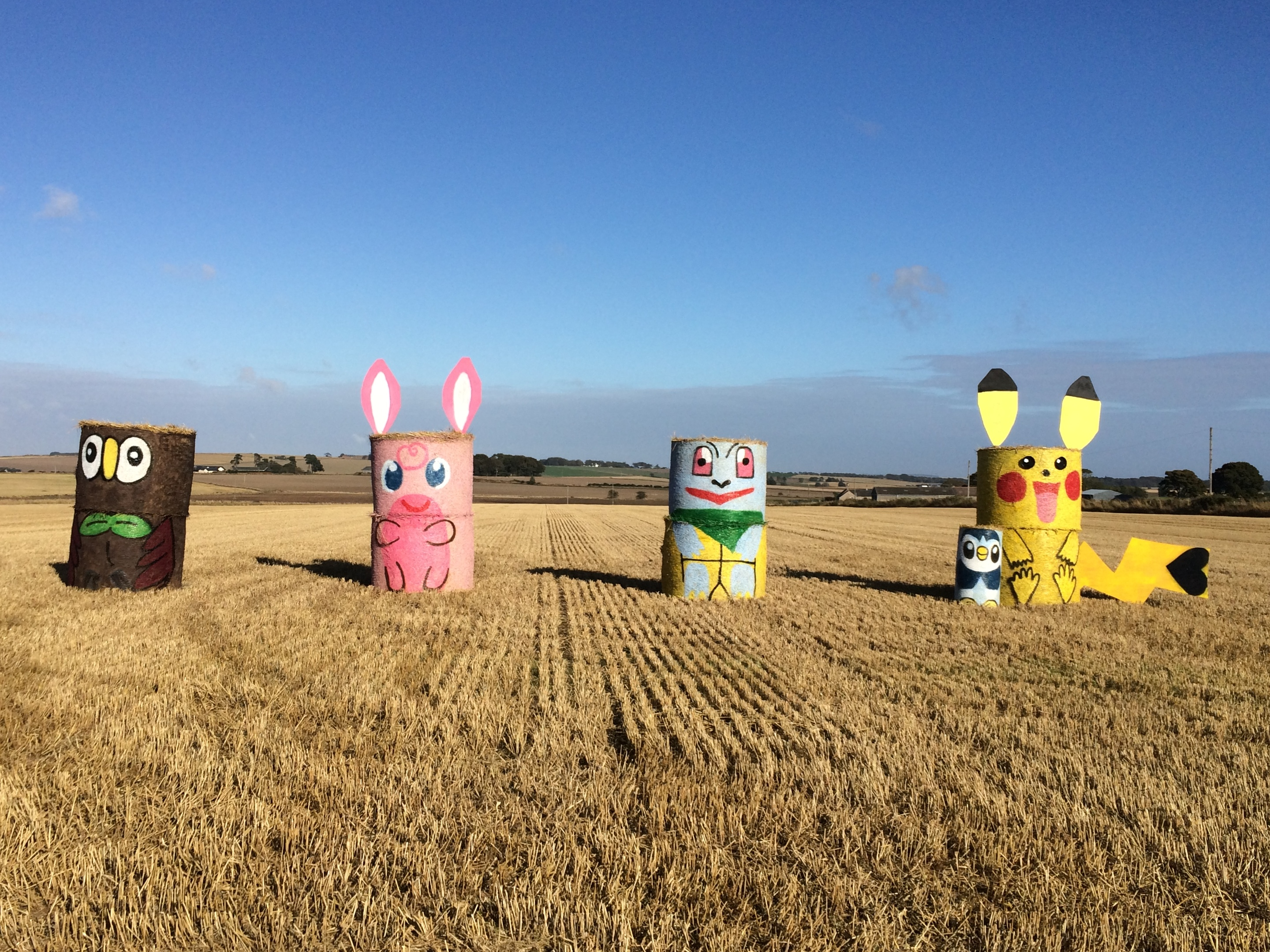 The colourful characters at East Skichen Farm in Angus