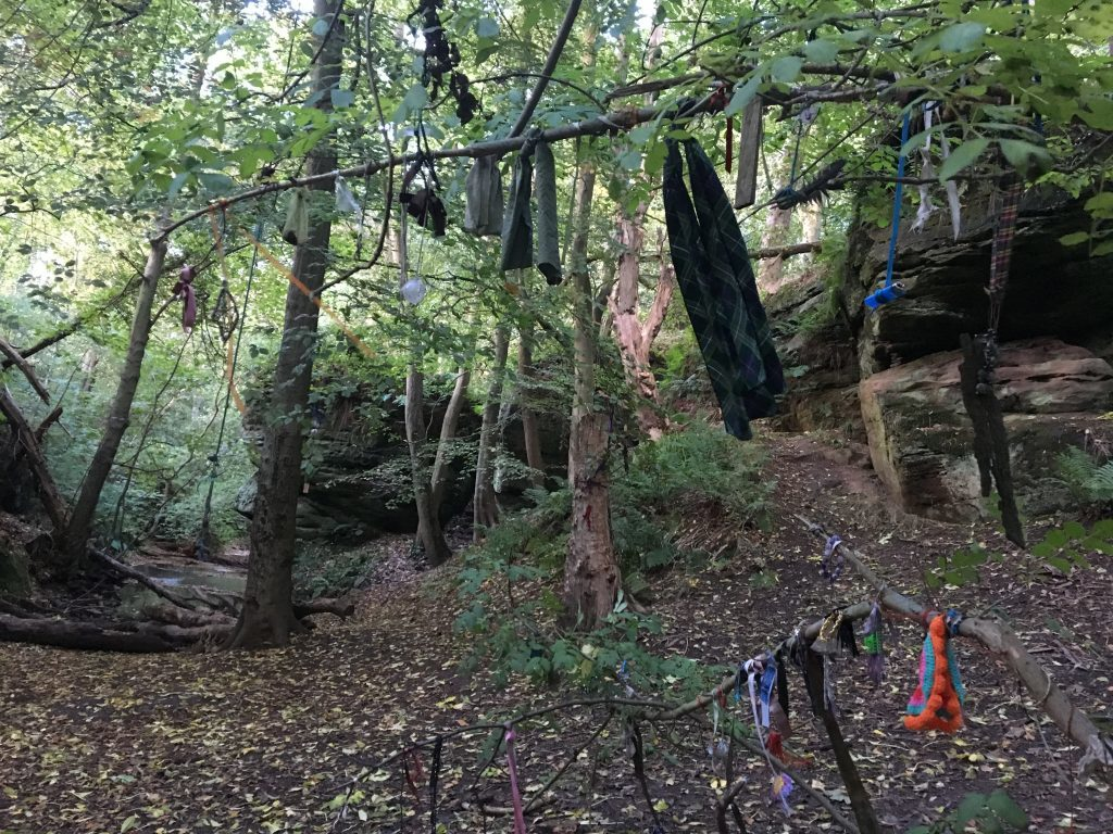 The clootie tree at Dunino Den.