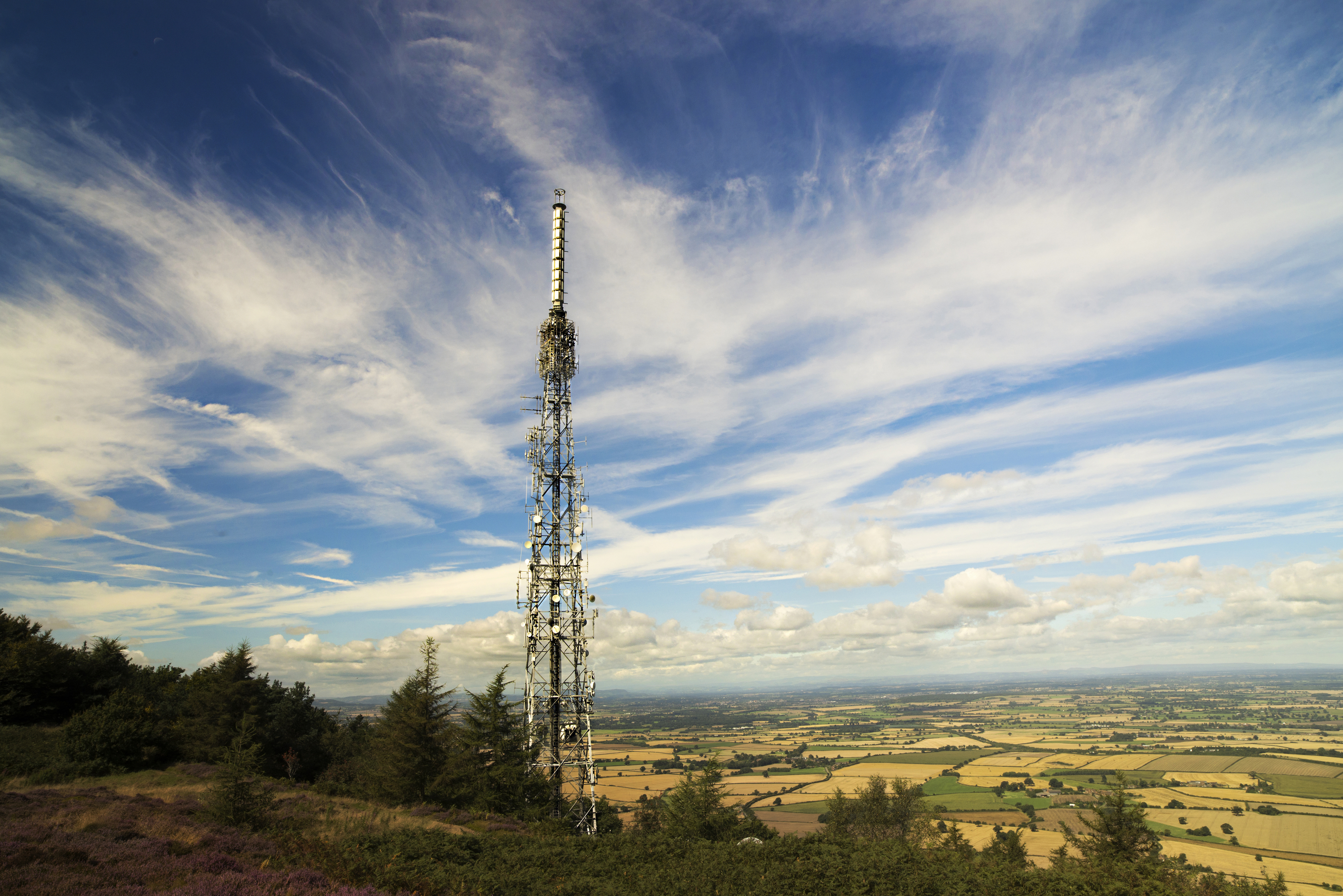 A survey shows landowners are being paid an average annual rent of £6,029 to host phone masts