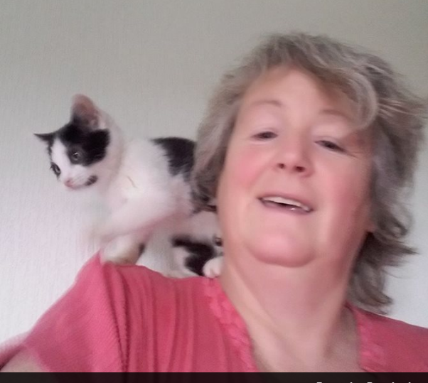Angela has dedicated a large part of her life to caring for ailing cats.