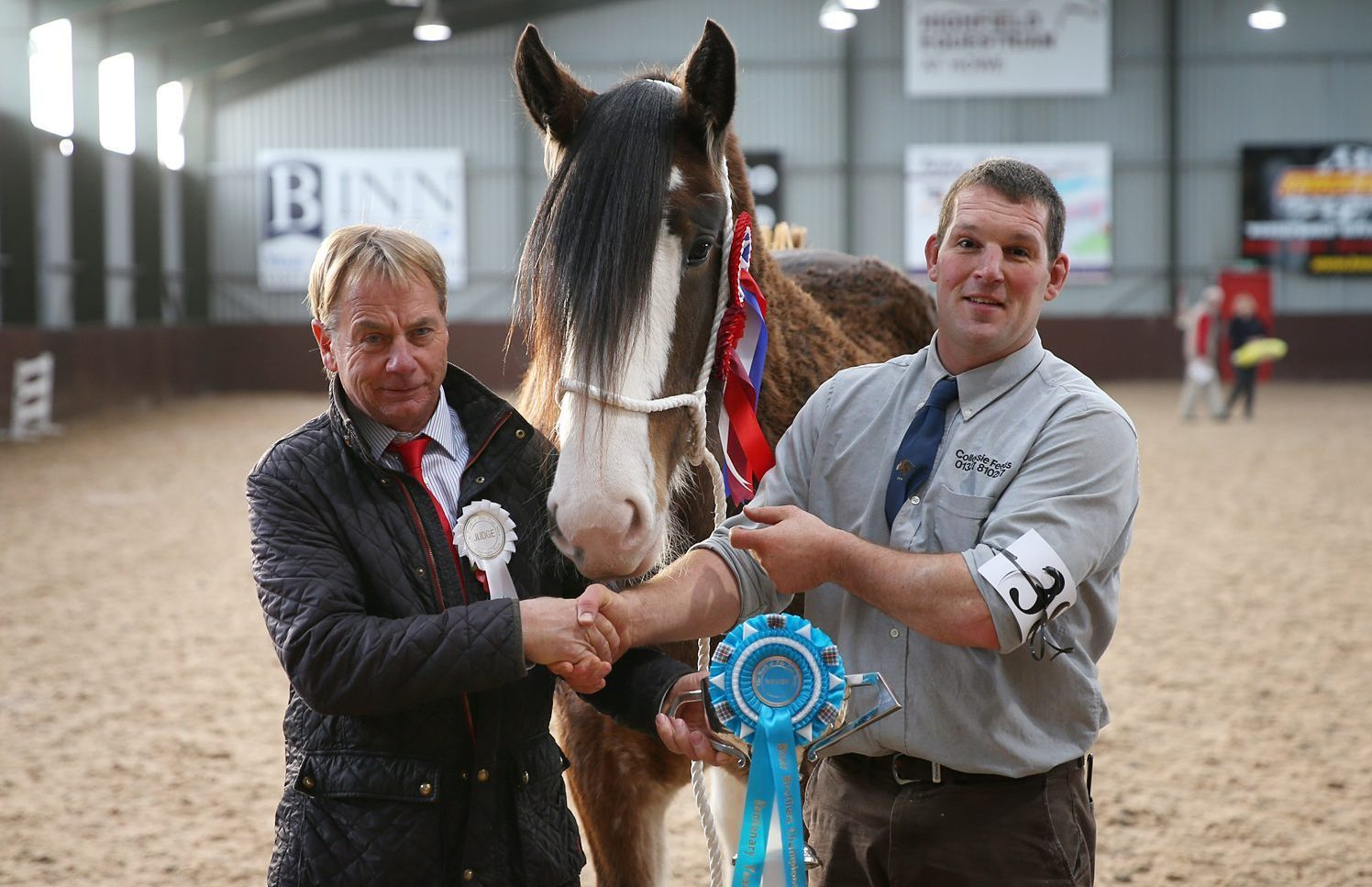 Supreme champion of the North of Fife Foal Show's centenary event was Collessie Jennifer, from RH Black