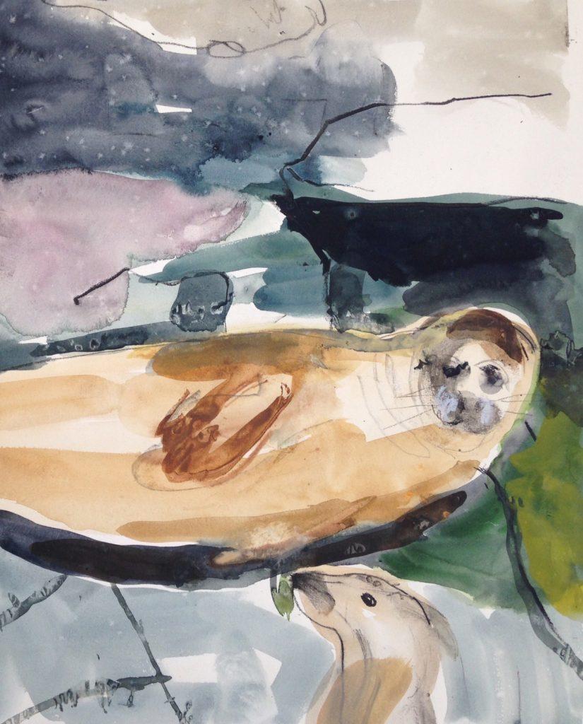 Seal by Lara Scouller.