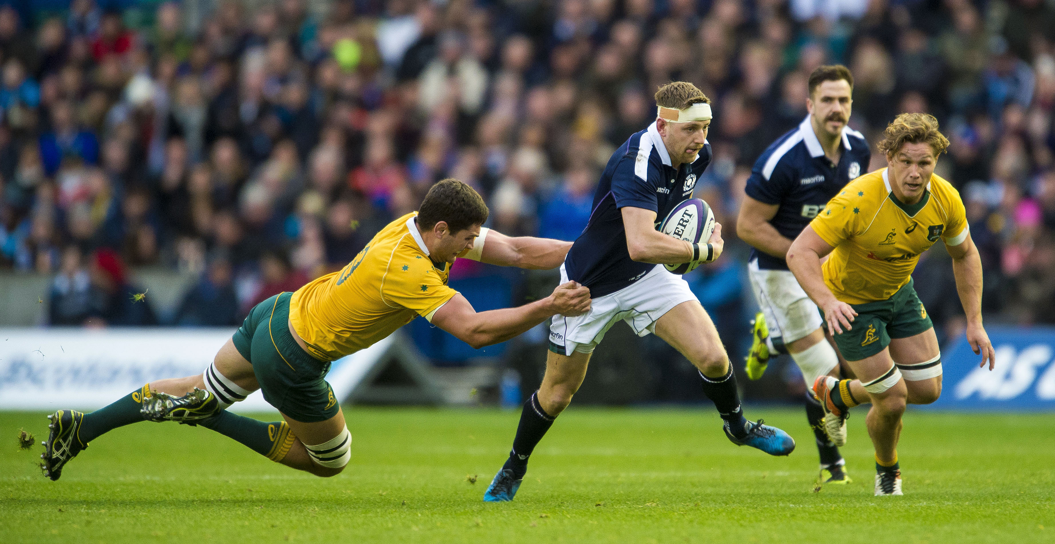 Finn Russell had a fine all-round game for Scotland against Australia.