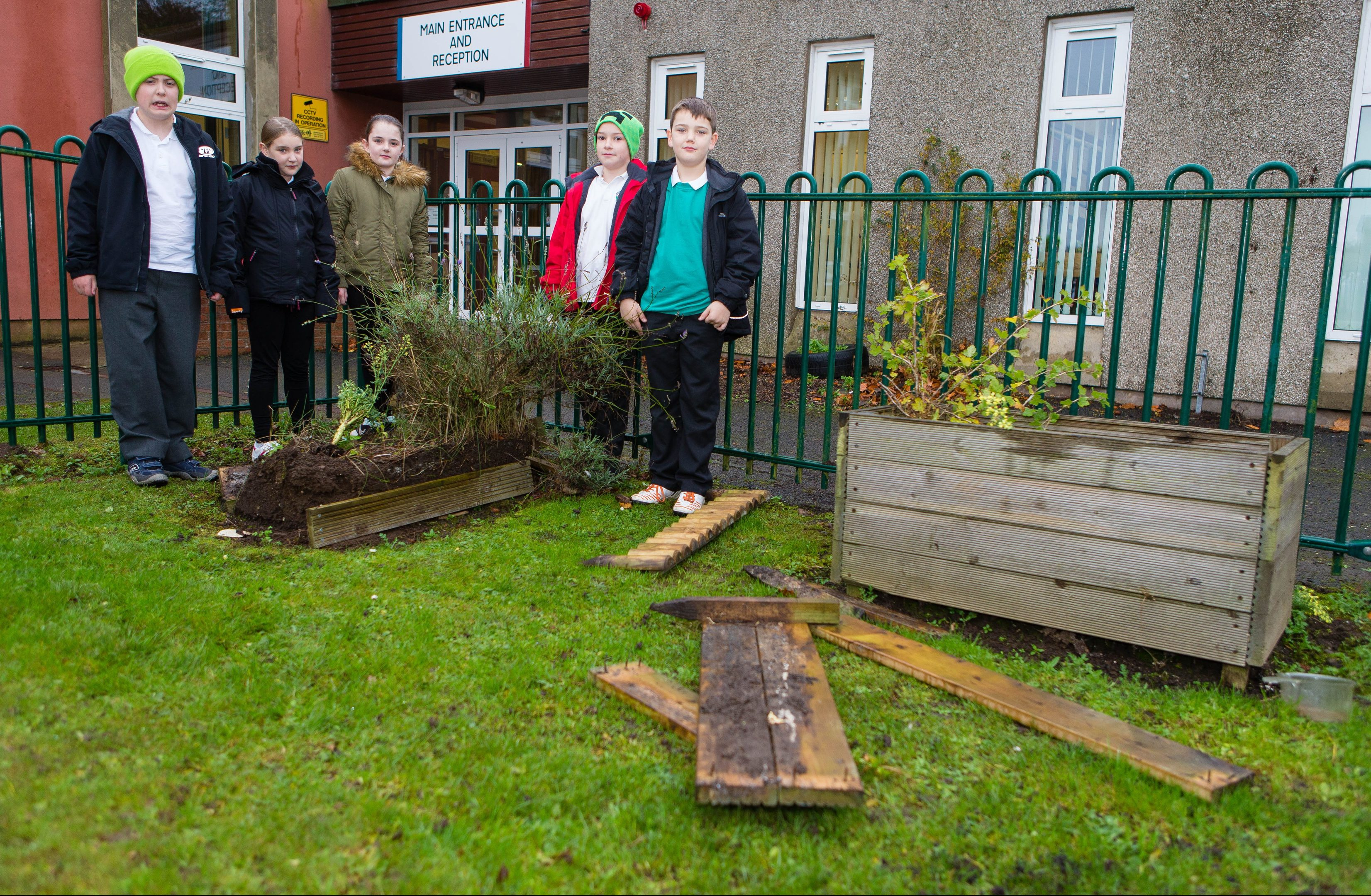 Pitcoudie Primary School in Glenrothes was subject to overnight vandalism in November. .Pictured are Frazer Dewar (9), Connor Cross (9), Kai Kerr (9), Lilly McIrvine (9) and Lauren McGrath (9)  in the gardens where the vandalism has destroyed all their hard work.