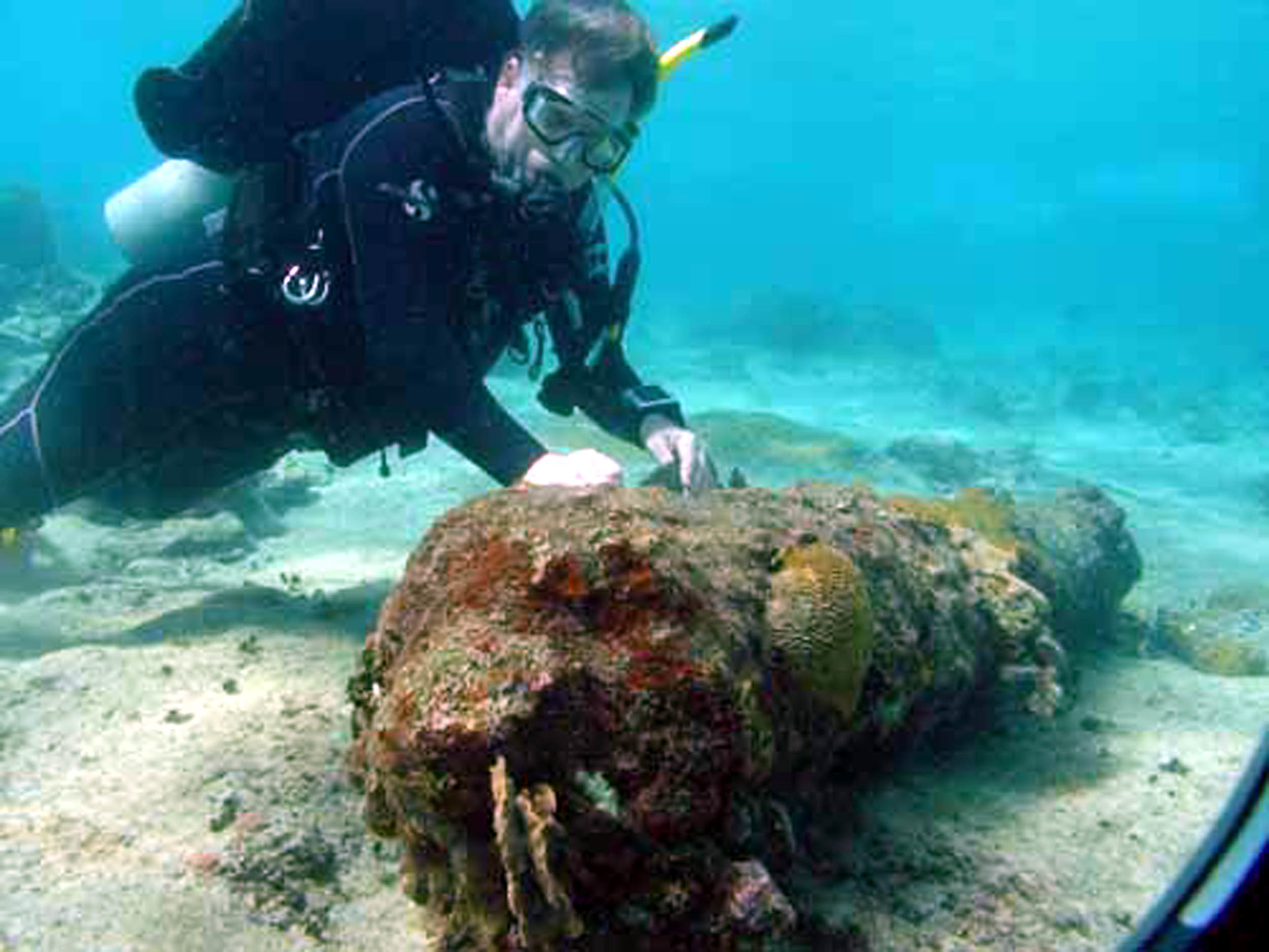 Cannons from one of Captain Kidd's ships were discovered off the coast of the Dominican Republic.