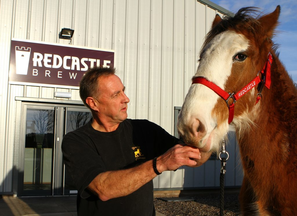 John Anderson of Redcastle Brewery, with one of his 2016 crop of Clydesdale foals, Zita