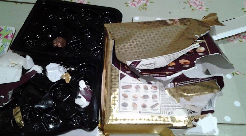 Jodie managed to unwrap the chocolates and ate 23 of them, leaving just one untouched.
