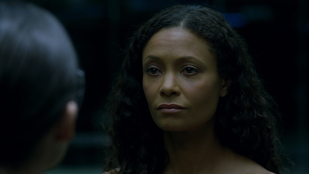 Thandie Newton stars in the critically acclaimed first series of Westworld