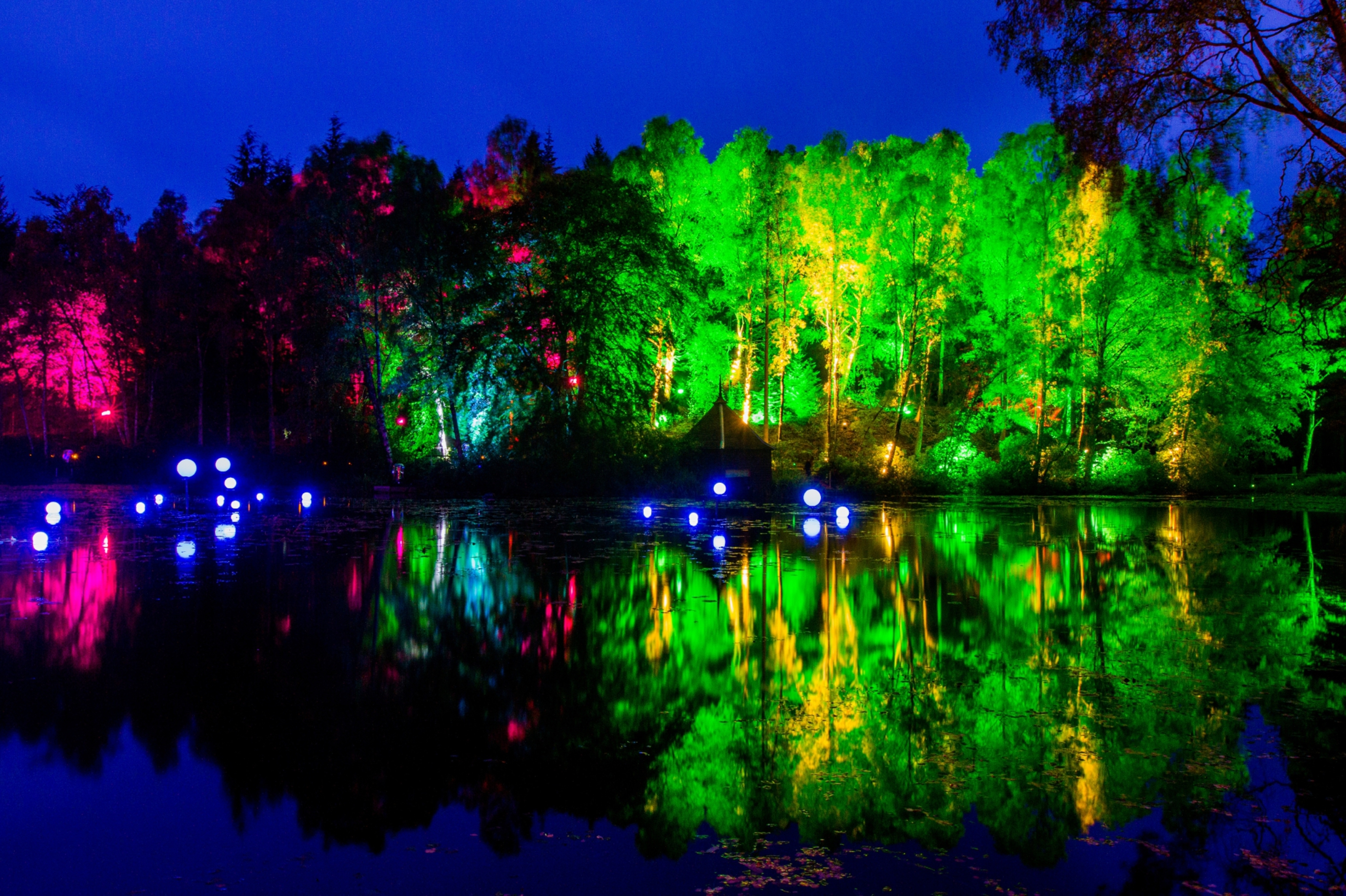 Steve MacDougall, Courier, Enchanted Forest, Faskally Woods, by Pitlochry. Scenes from the preview night. Pictured, view of the lit trees reflected in the water.