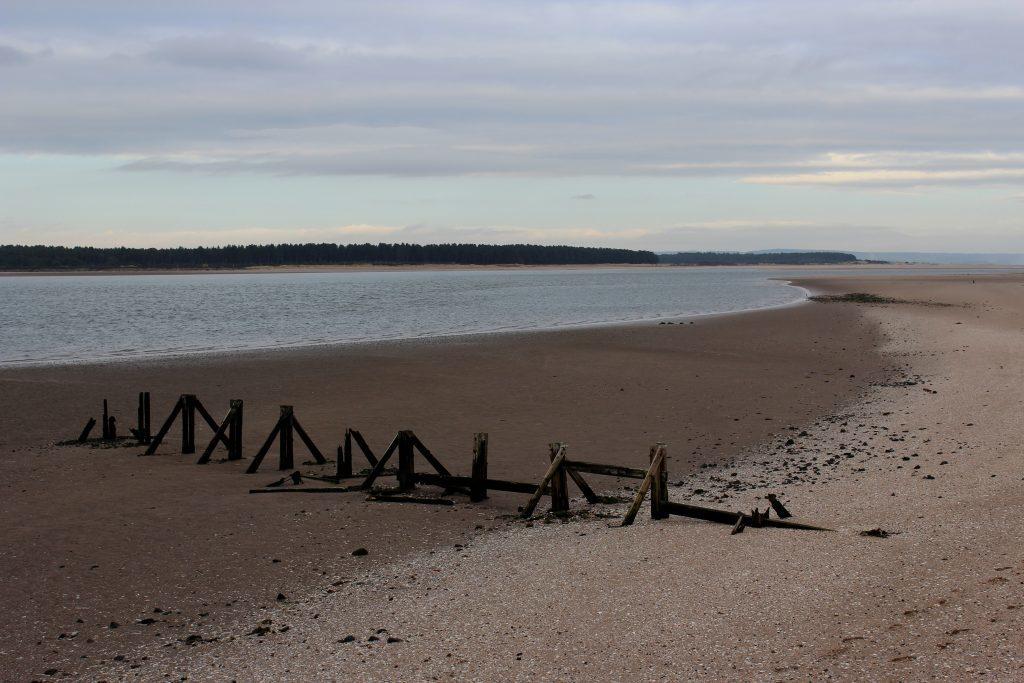 2-eden-estuary-james-carron-take-a-hike