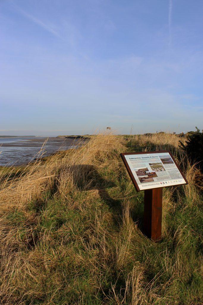 3-eden-estuary-nature-reserve-james-carron-take-a-hike