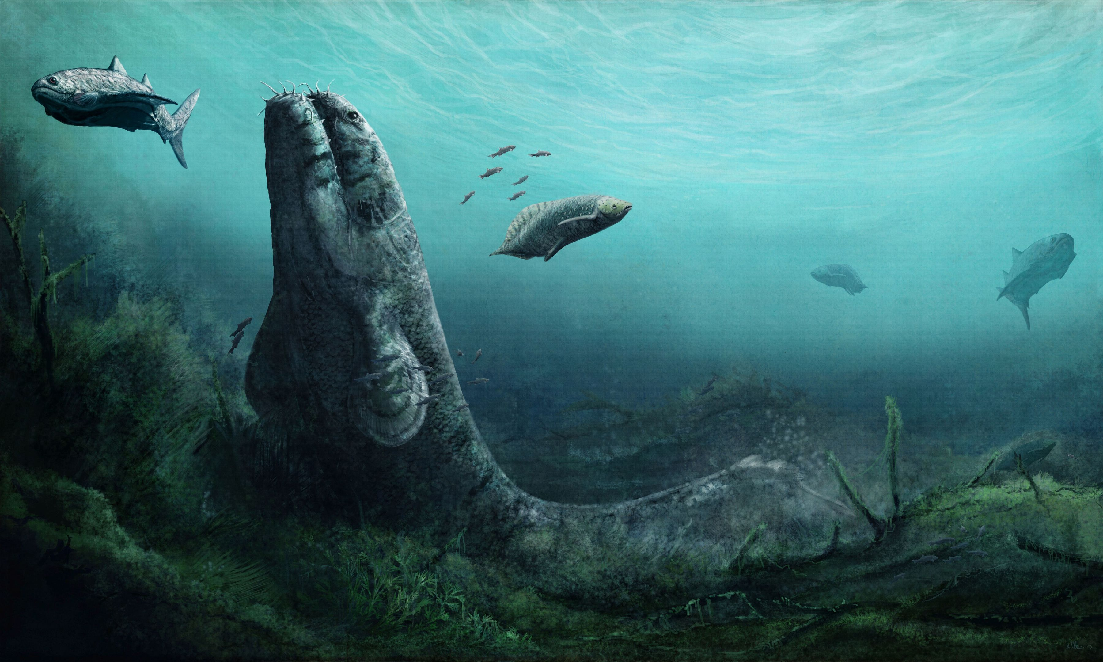 The Fossil Hunters exhibition will explain how life on Earth first left the oceans to flourish on land.