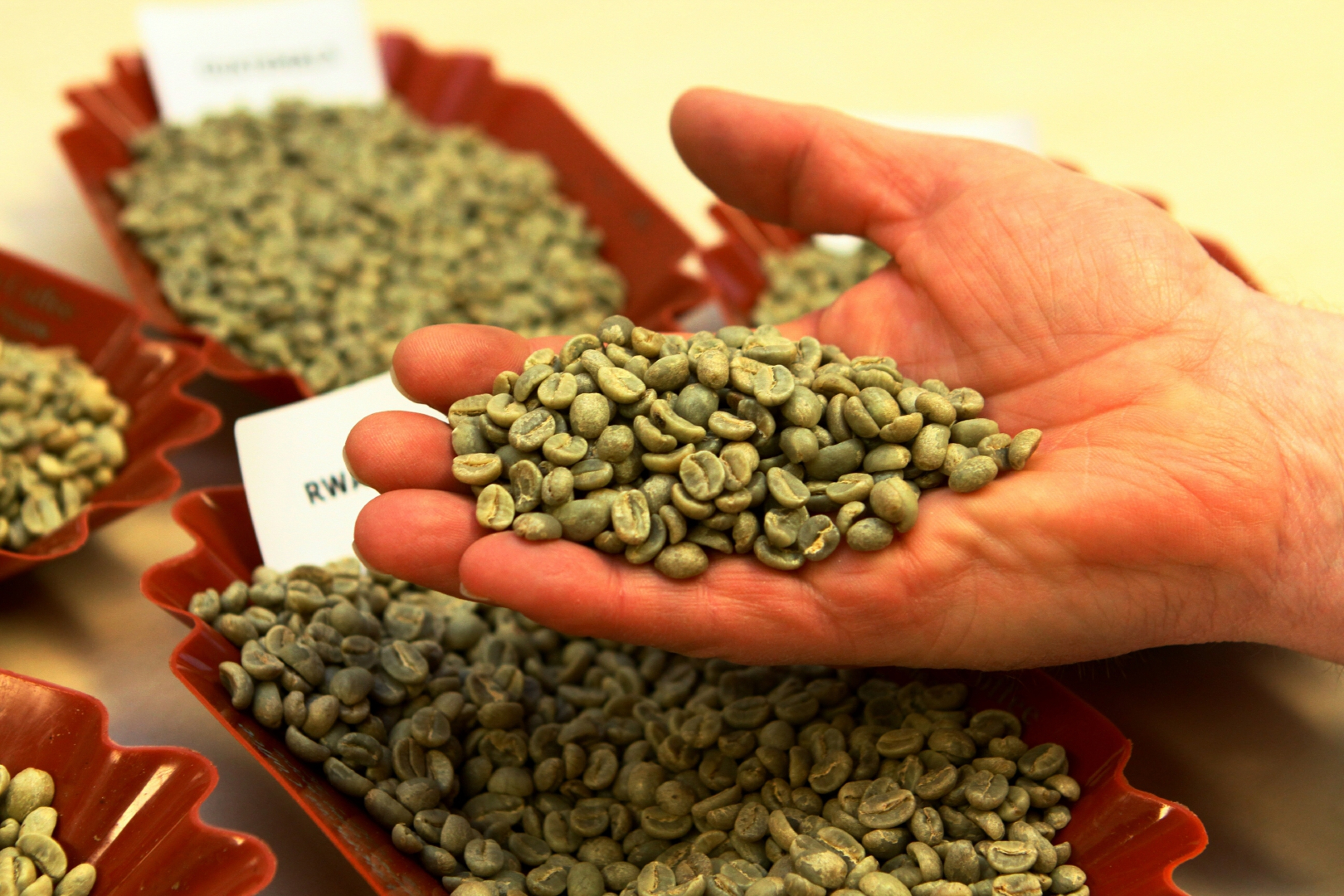 A handful of coffee beans, at James Aimer.