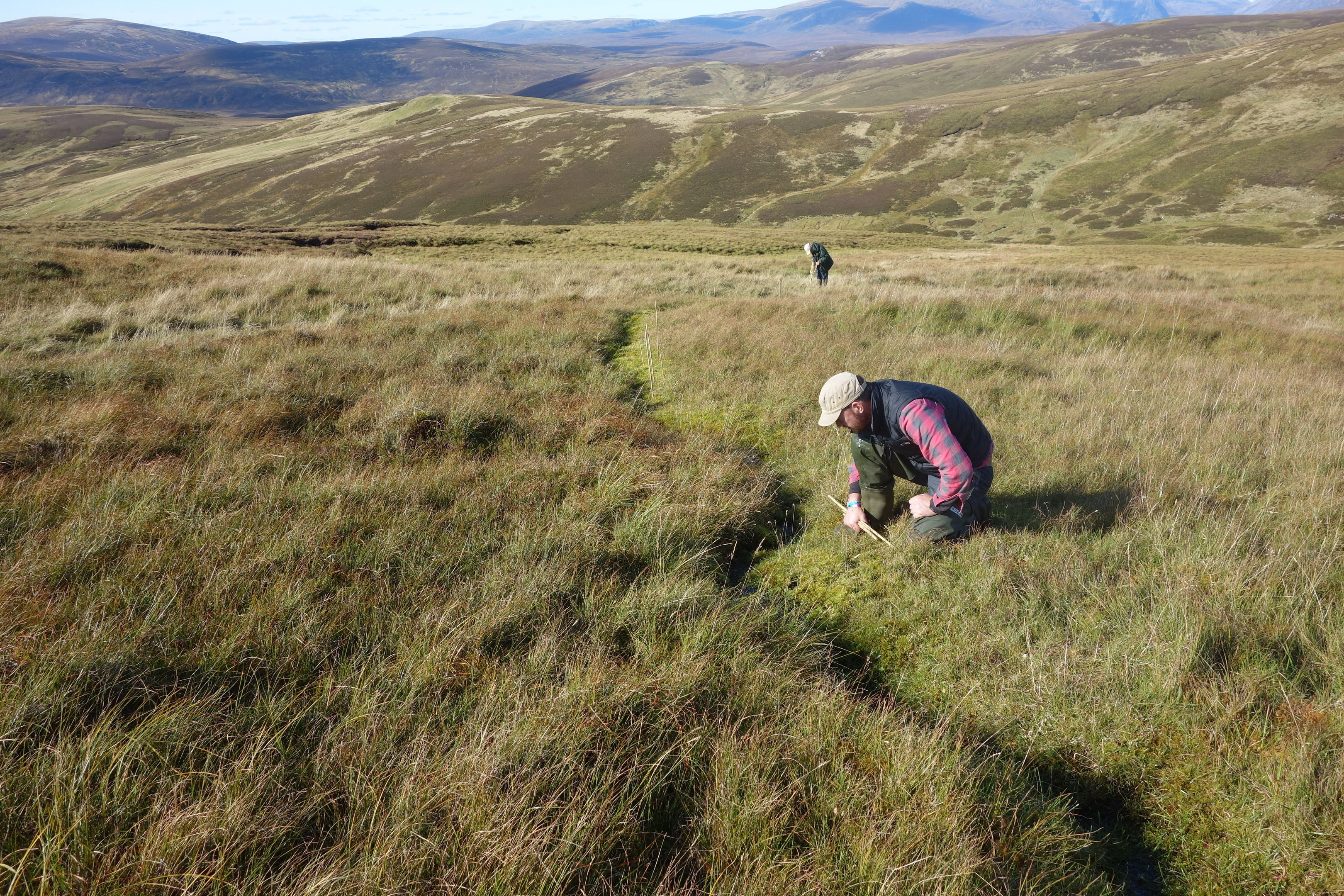 Saxifraga hirculus field work at Fealar Estate with volunteer Steve Wands at the front and Martin Robinson in the back.