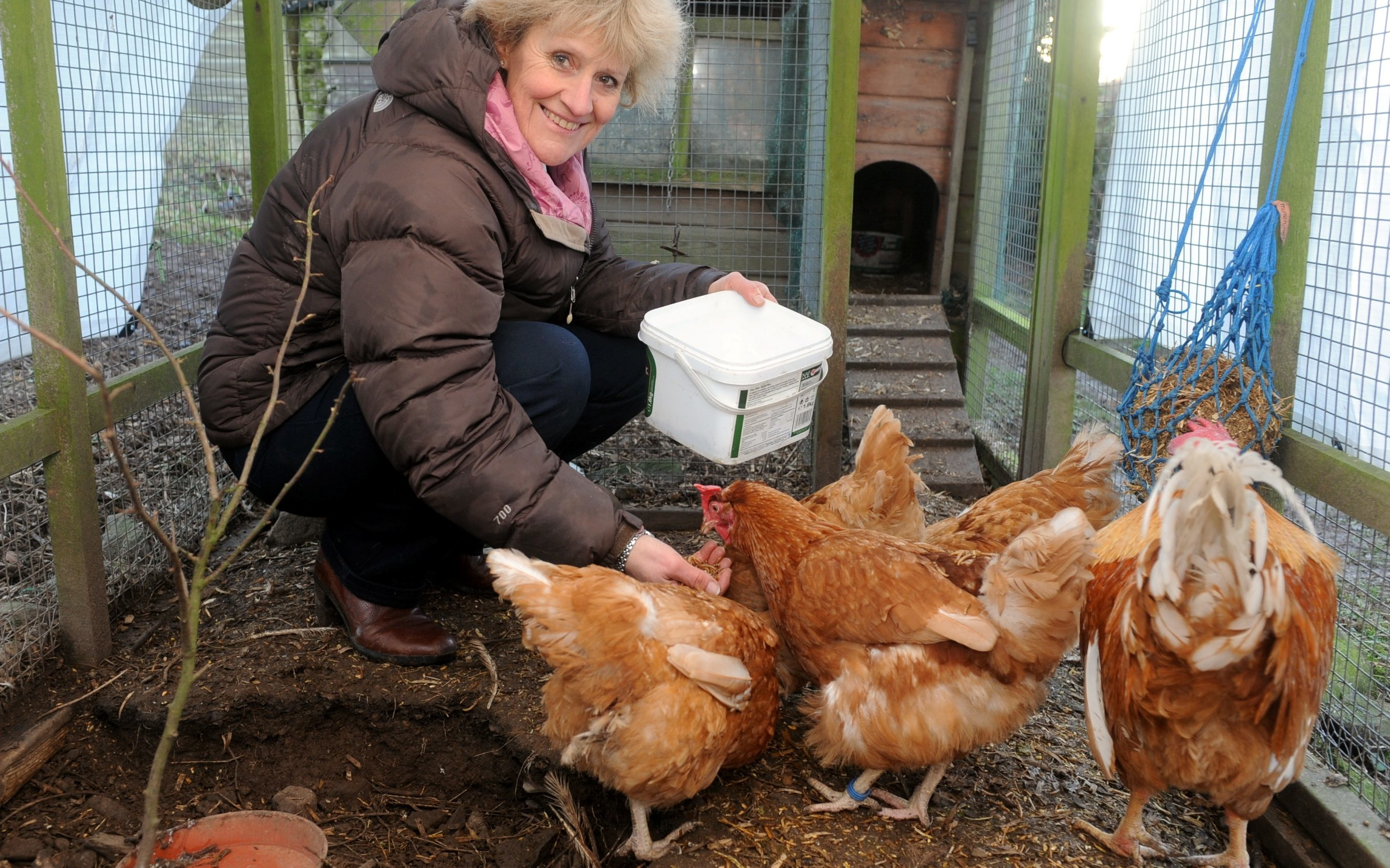 Birds in paradise: Jill Sykes with some of her girls