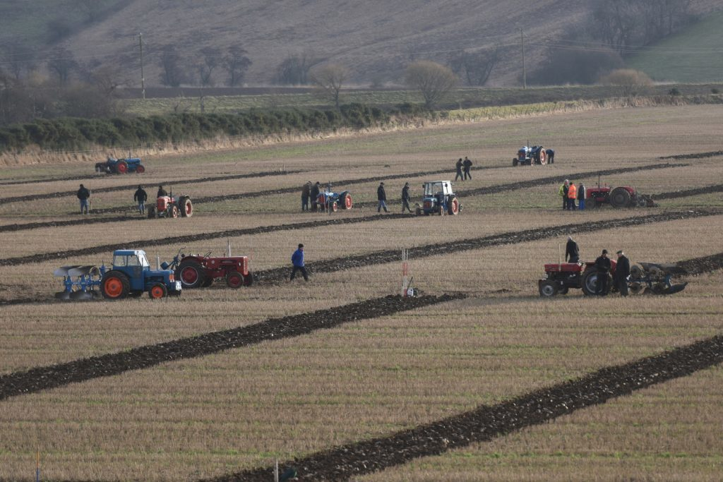 The ploughing match underway.