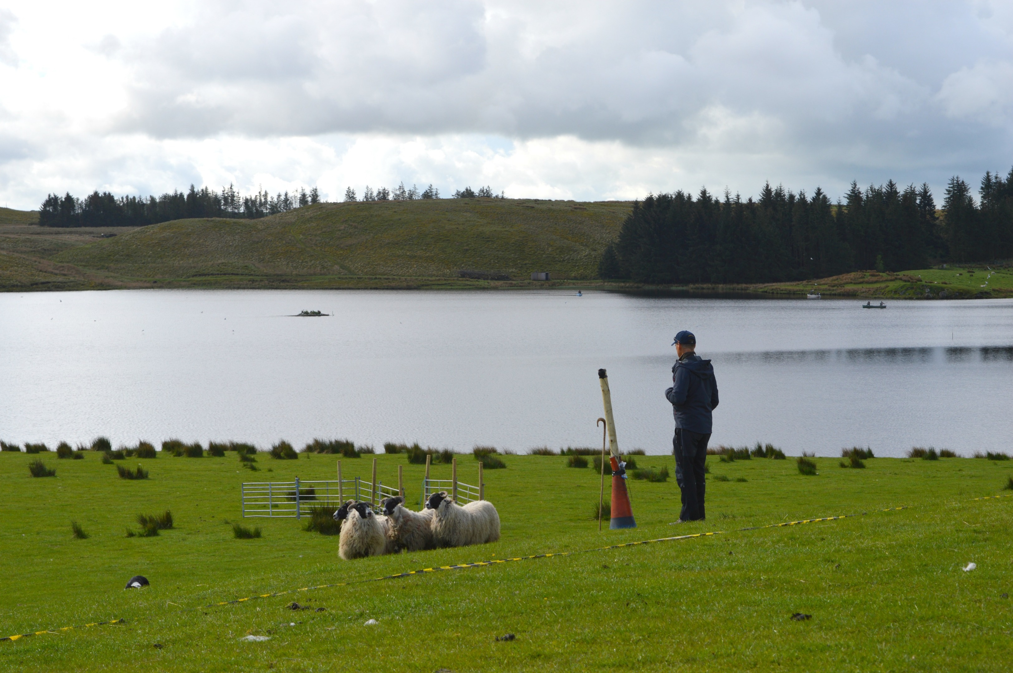 The programme will show trials in Blairgowrie, Harelaw, Stranraer and Cardigan Bay