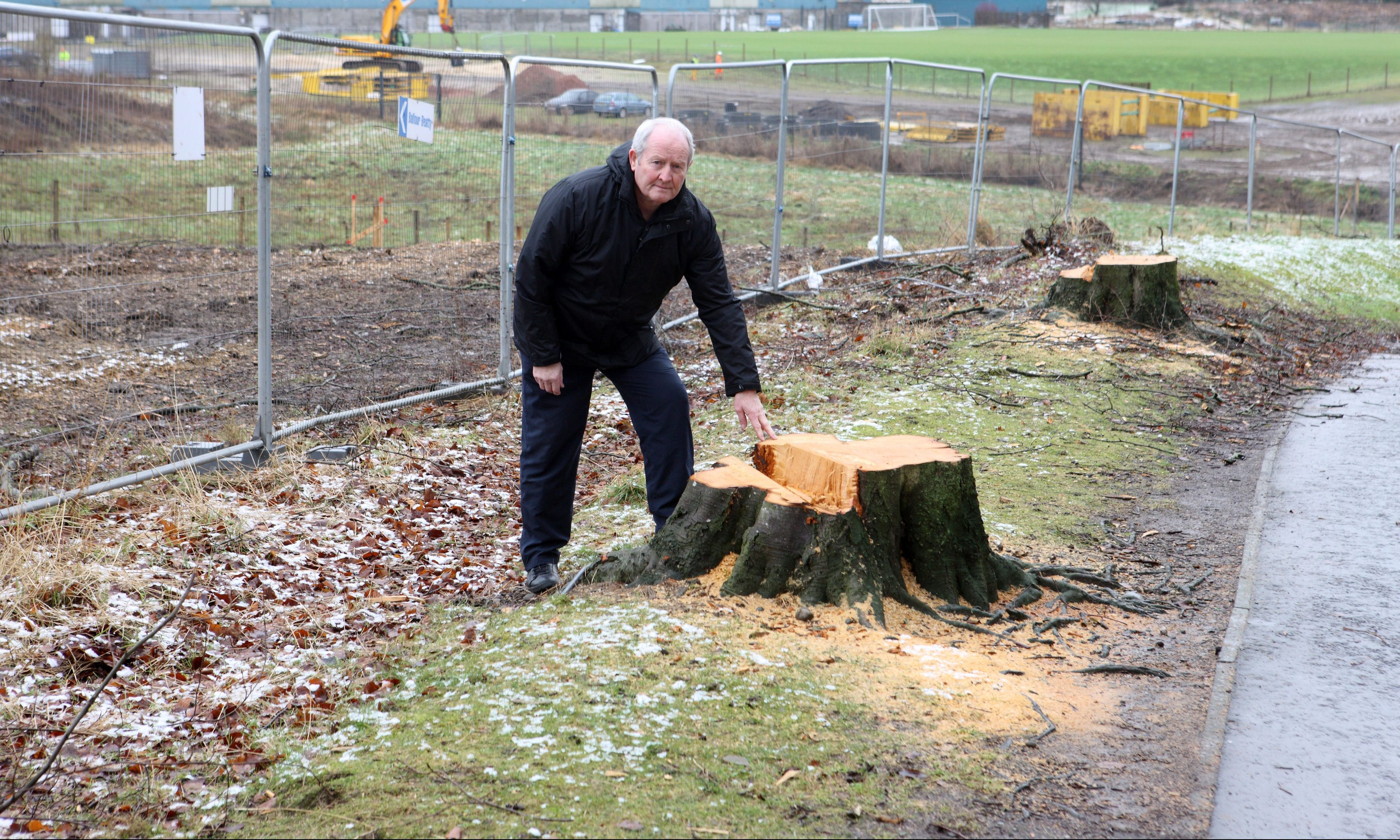 Callum Gillies at the site of the felled trees.