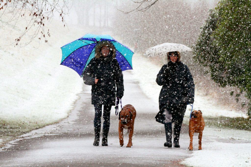 A snowy walk at Monikie.
