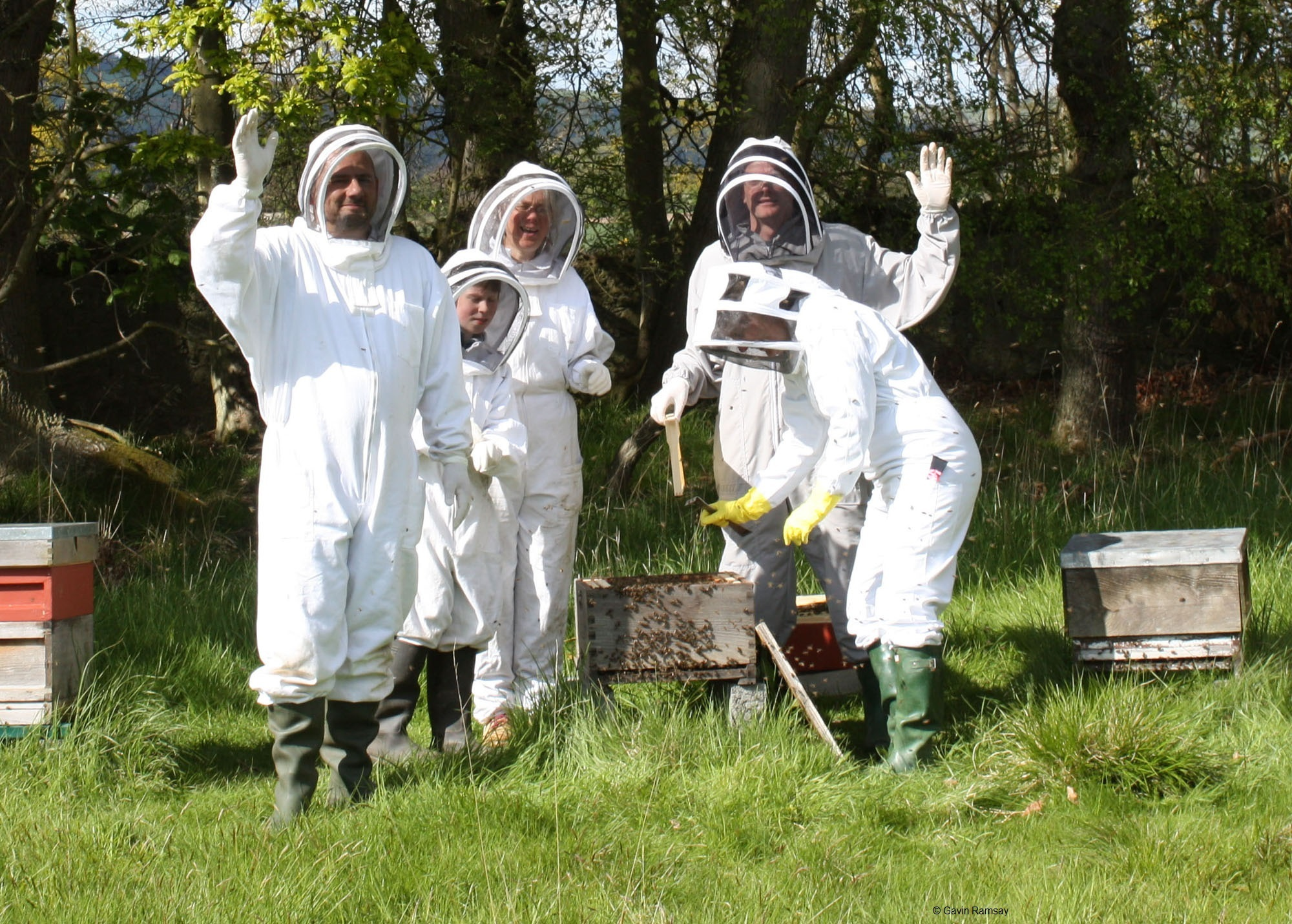 The trainee beekeepers will receive a 'starter kit' which includes bees