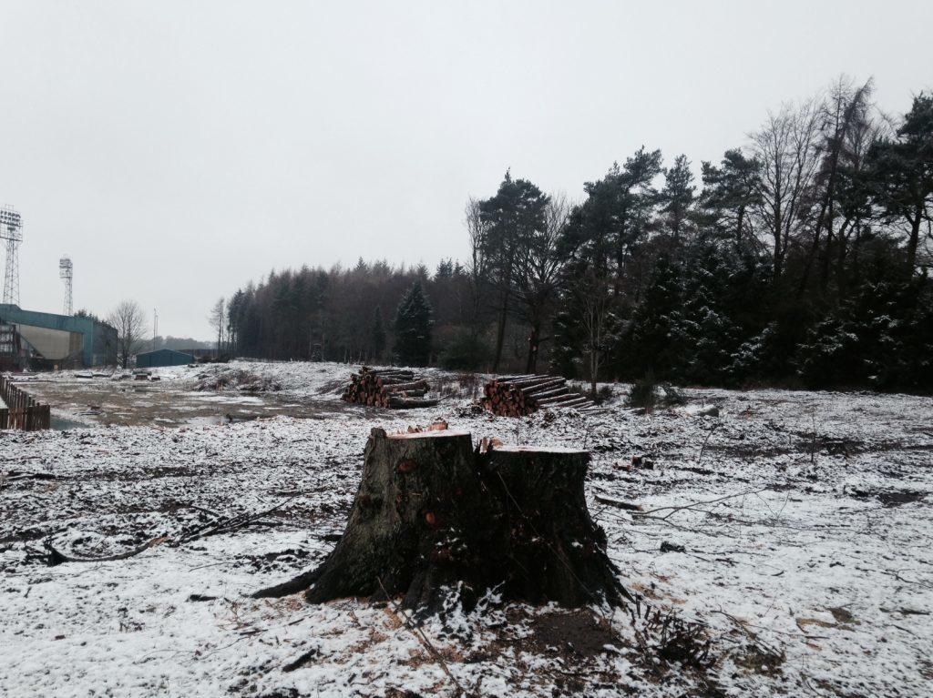 The area between McDiarmid Park (on the left) and Perth Crematorium has been cleared of trees.